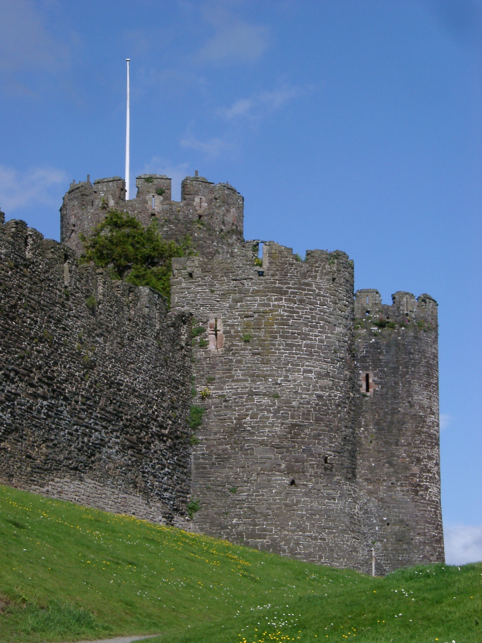 Historic Conwy Tower on Grassy Landscape in Conwy, North Coast of Wales on a Light Blue Sky Background.