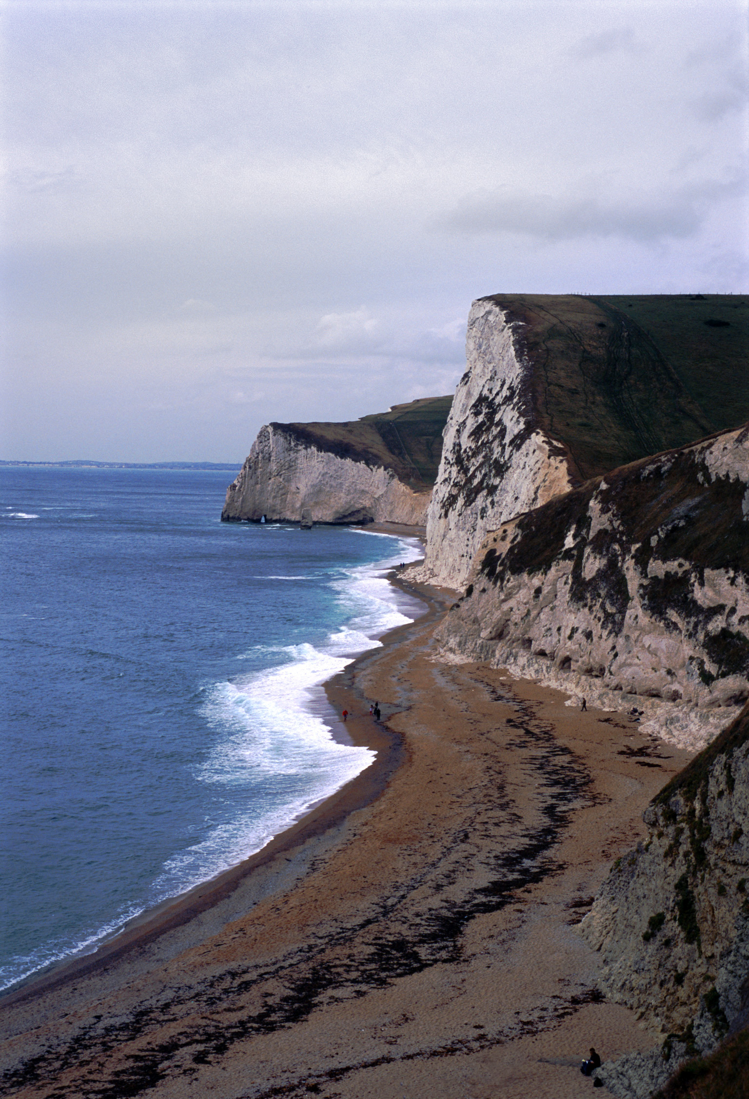 cliffs on the jurassic coast, lulworth, dorset