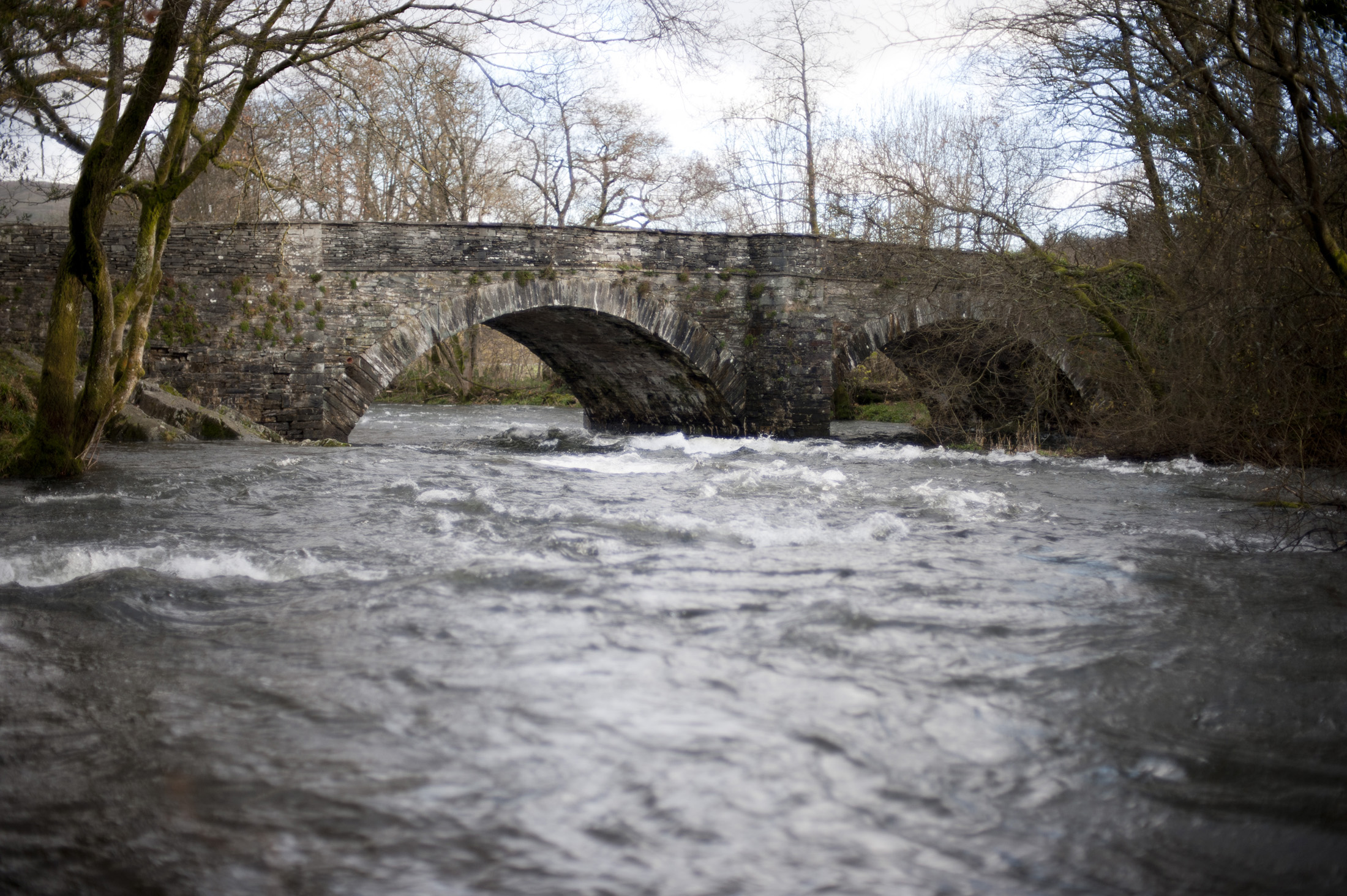 View of a fast flowing river in spate passing under the old stone arches of Skelwith Bridge in the Lake District in Cumbria