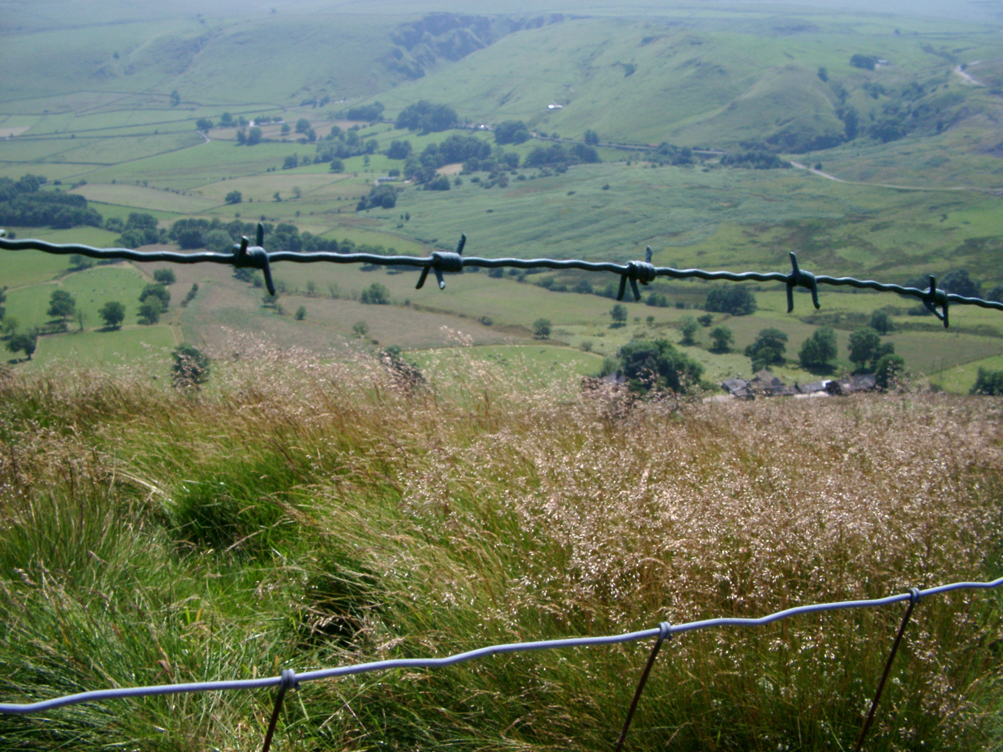 Extensive View of Green Farm of Derbyshire Dales, with Old Barbed Wire Fence, Located in England, United Kingdom.