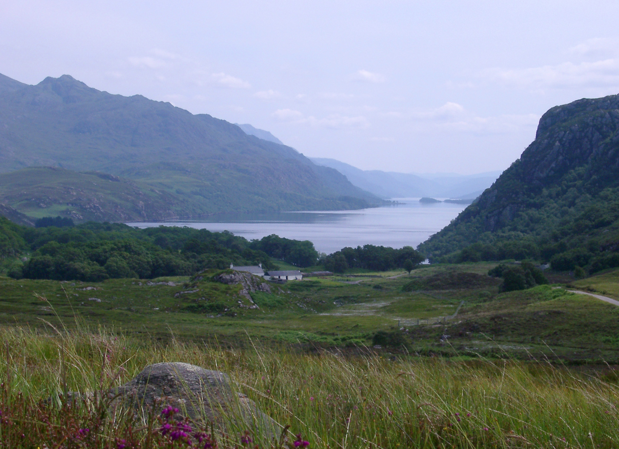 Tranquil Scottish landscape with heather growing on the shores of a misty loch bounded by rugged mountain peaks