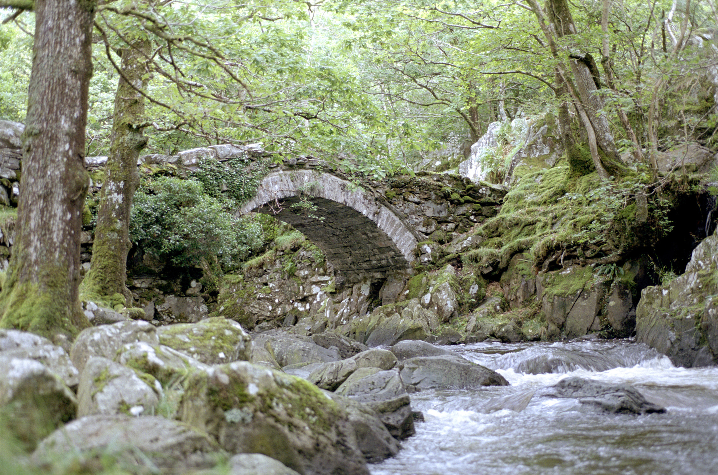 Low angle view over the rocks and flowing water of an arched stone bridge over a river in a leafy green woodland setting