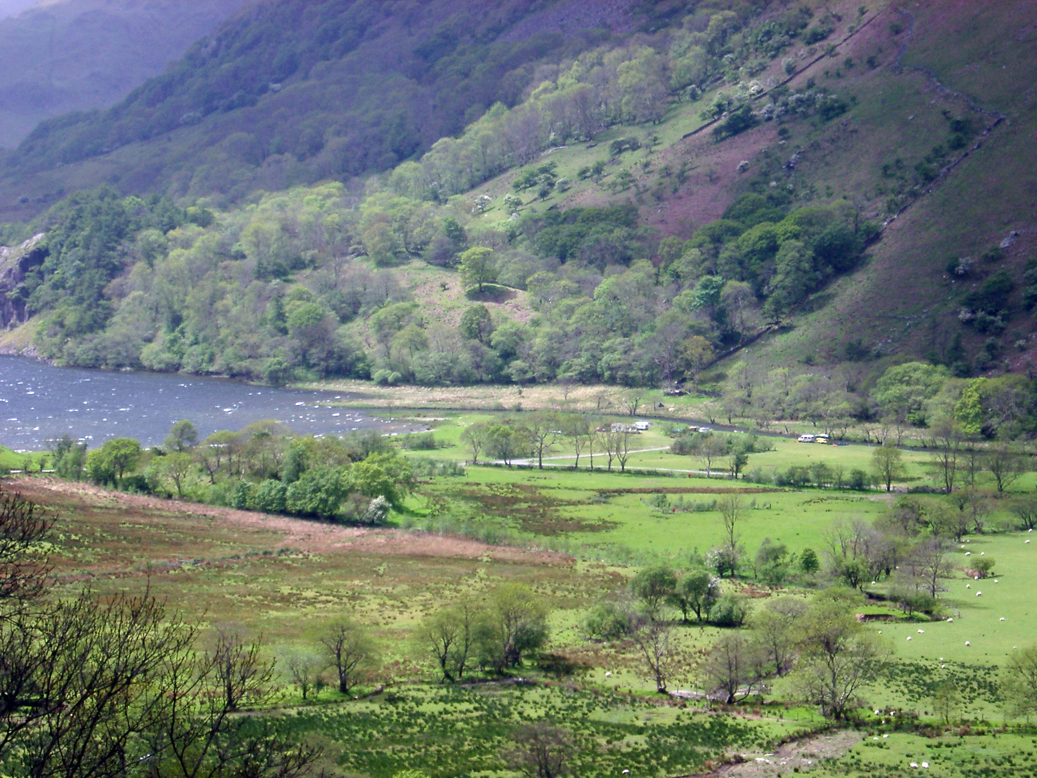 Lush valley with a farmhouse leading to a tranquil lake between steep mountains in Wales