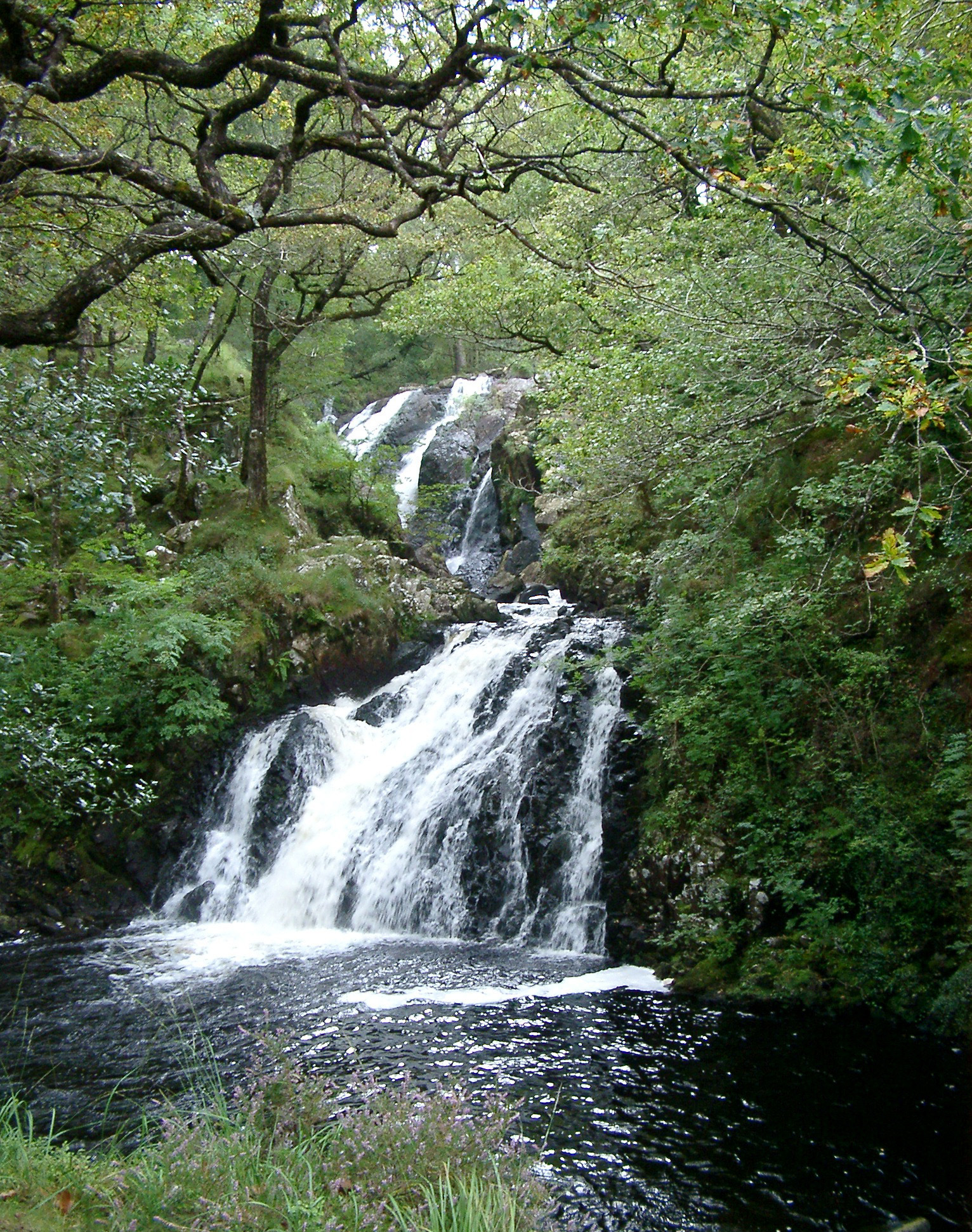 Rhaeadr Ddu falls, or the Black Falls, take their name from the black rock over which the water cascades and are found in the Coed Ganllwyd National Nature Reserve, Wales