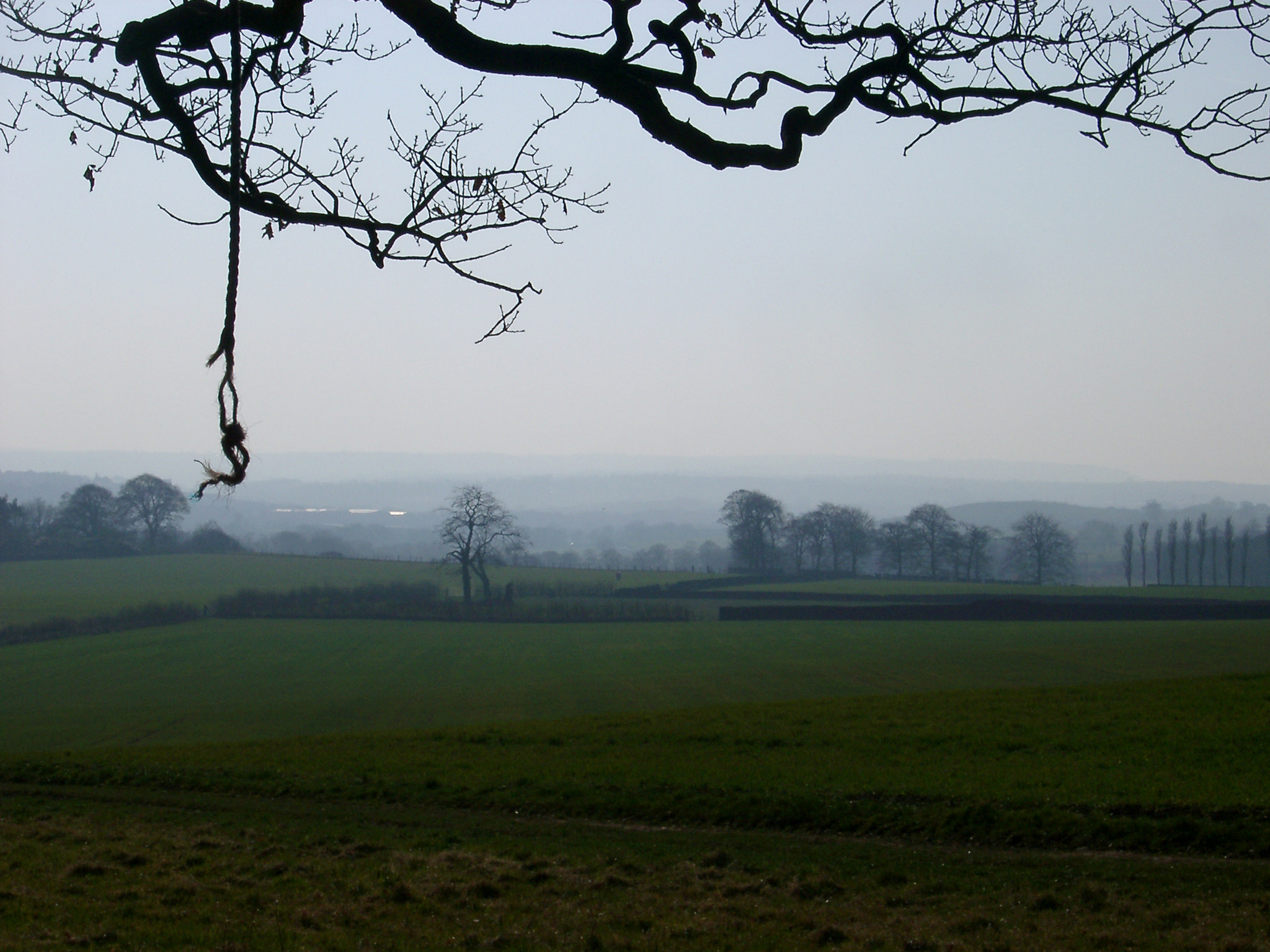 Misty landscape view of lush green English countryside with farmland and pasture and distant trees