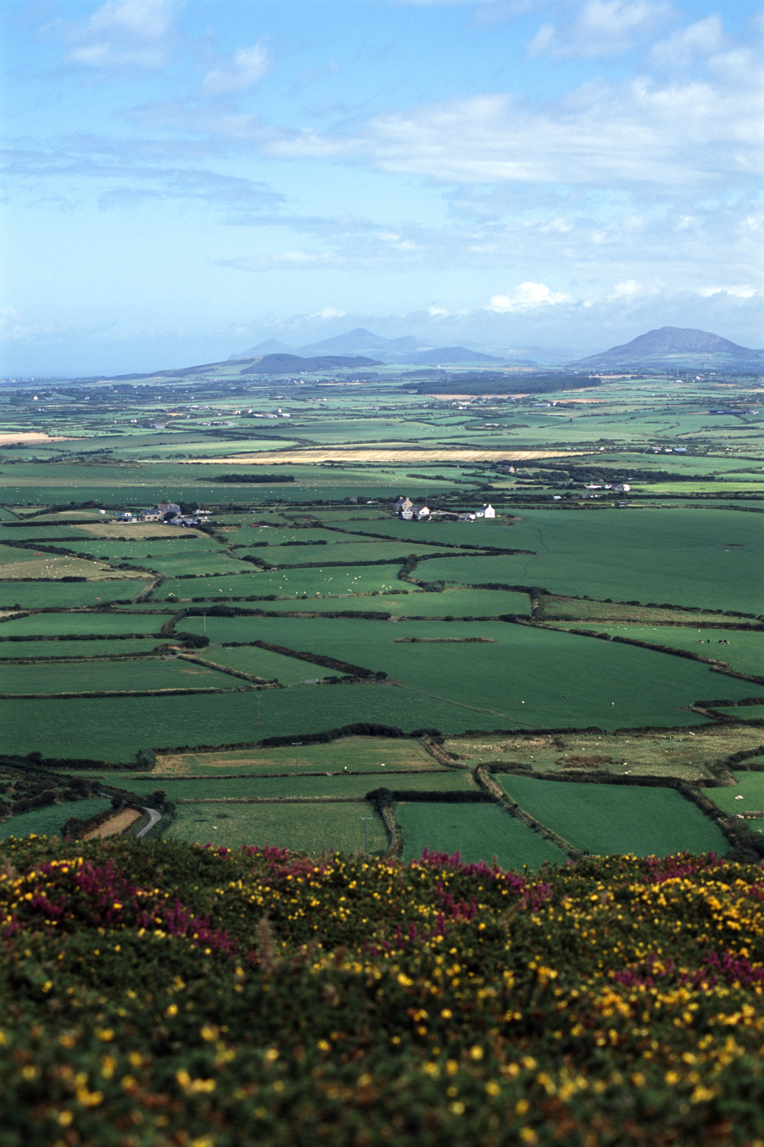 Scenic landscape with a patchwork of lush green corn fields and pasture on the Llyn Peninsula in Wales with distant mountain ranges under a cloudy blue sky