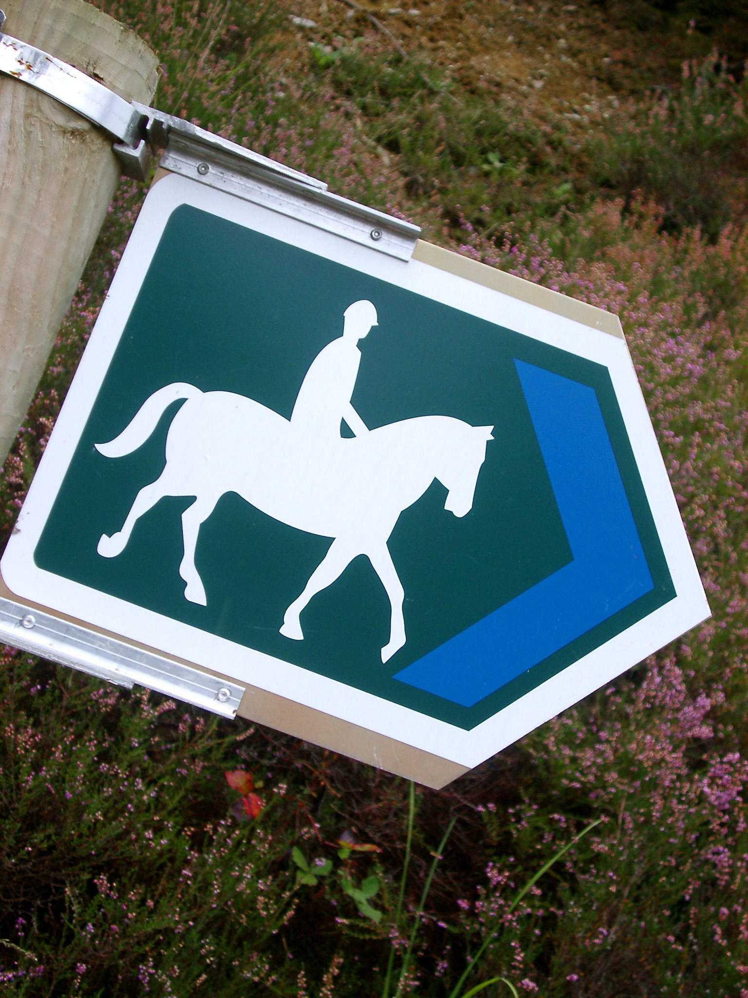 Bridal Path sign with a right pointing arrow and white silhouetted figure of a person on horseback attached to a wooden pole outdoors