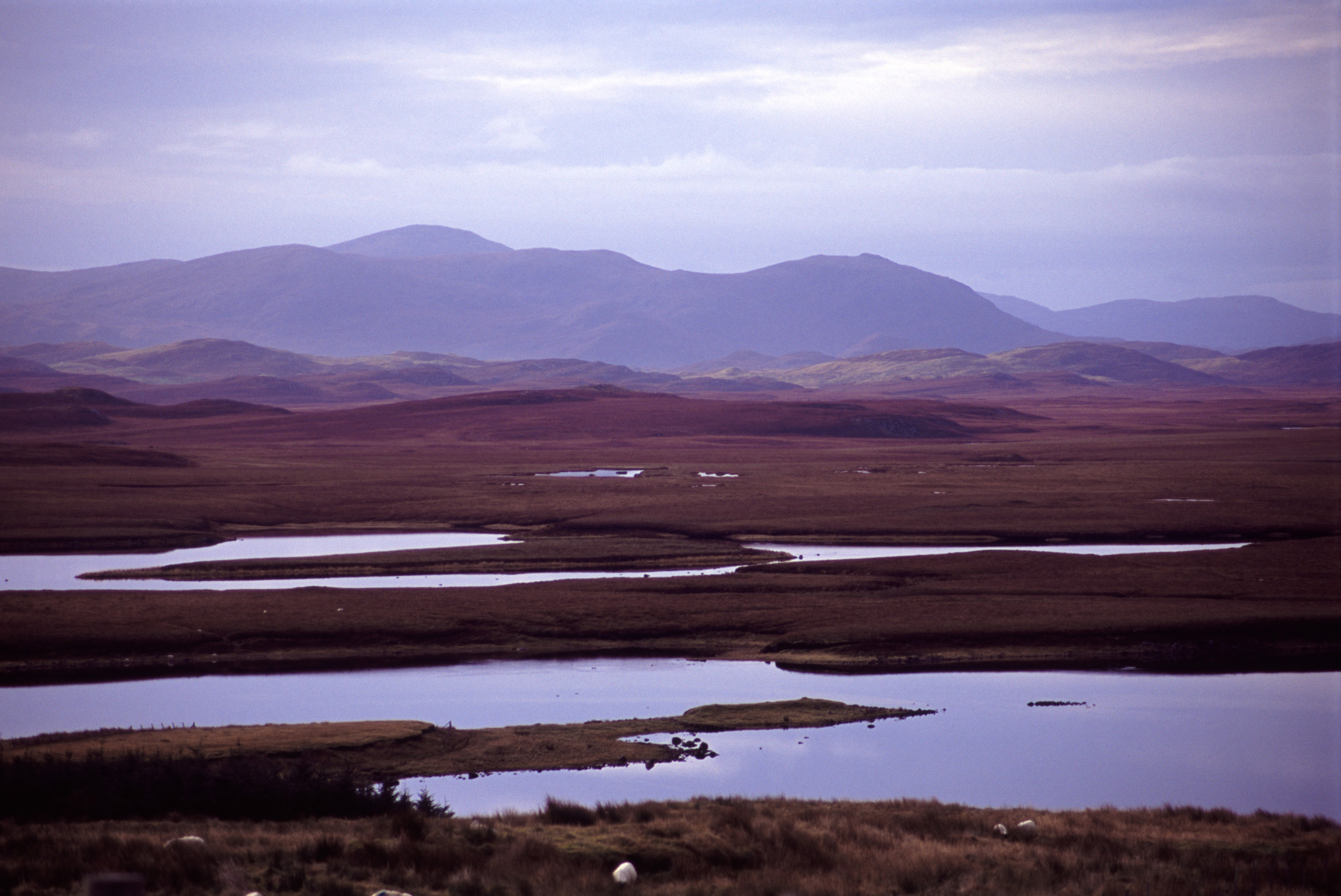 Hebrides landscape vista with purple colored mountains towering above a low lying coastal bog on a cloudy day, Scotland , UK