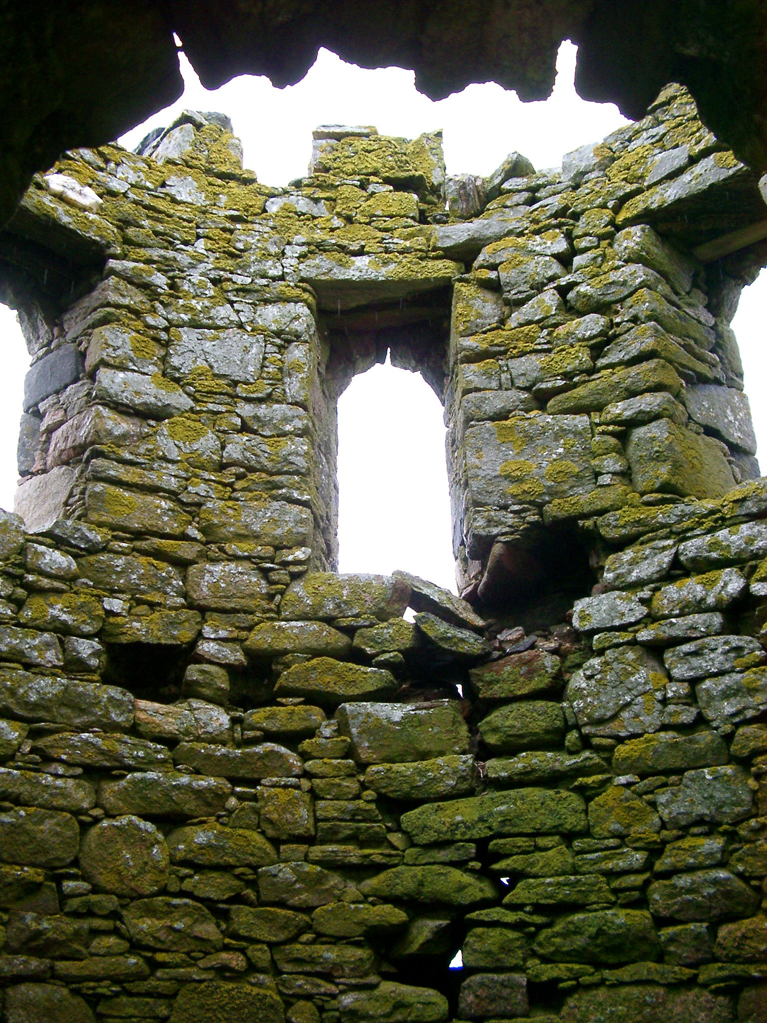 Looking Up at Moss Covered Rock Walls Inside Scolpaig Tower, Outer Hebrides, Scotland