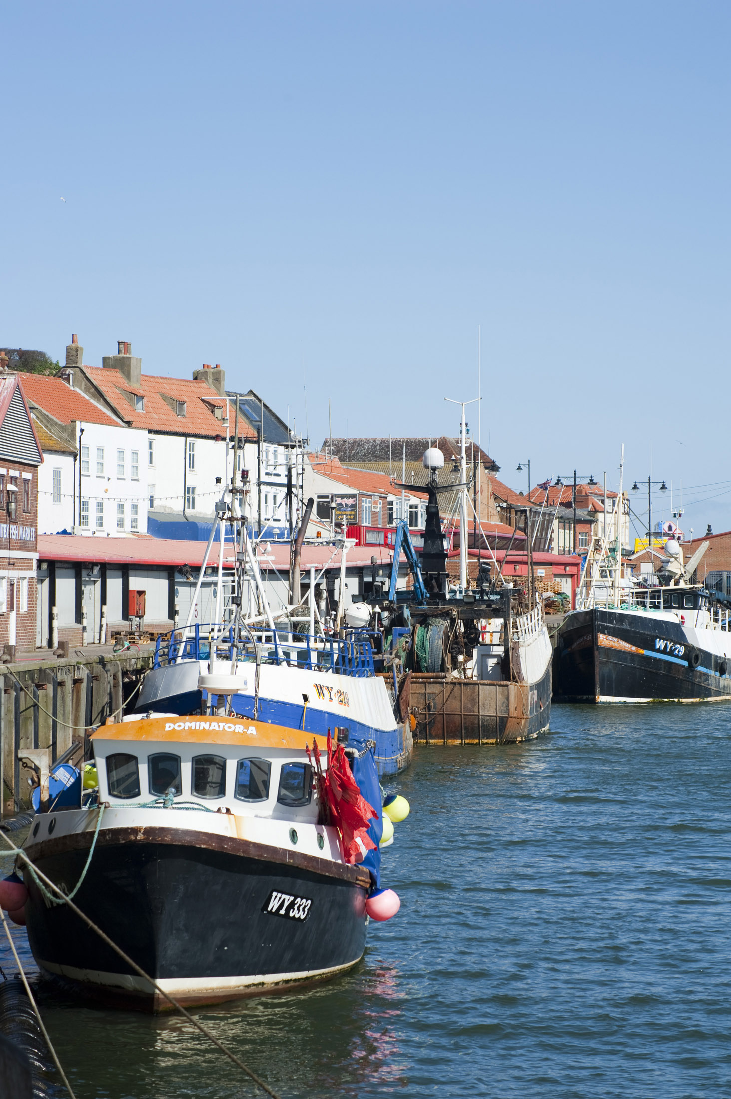 several fishing boats moored at the quaysdie near whitby fishmarket