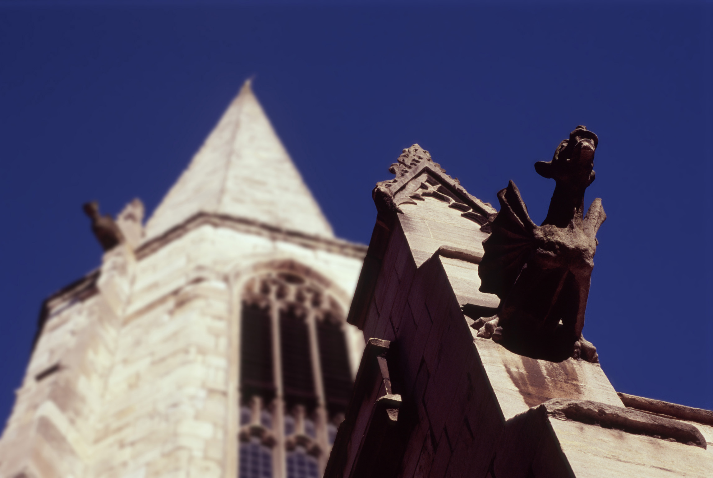 Gargoyle of a bat or dragon of carved stone mounted on a tower in York, UK