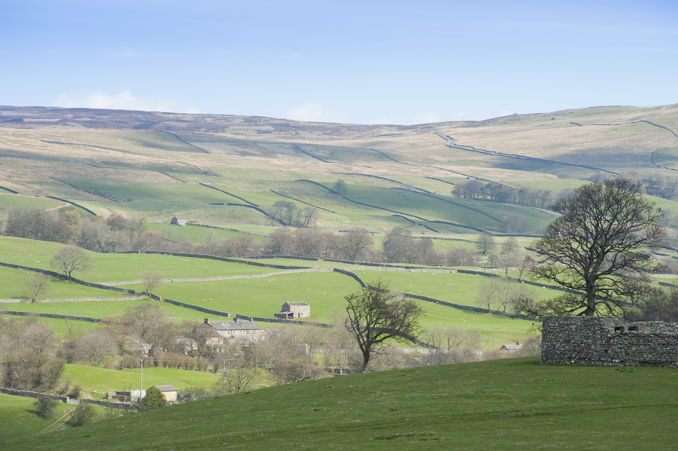Free Stock photo of wensleydale landscape  Photoeverywhere