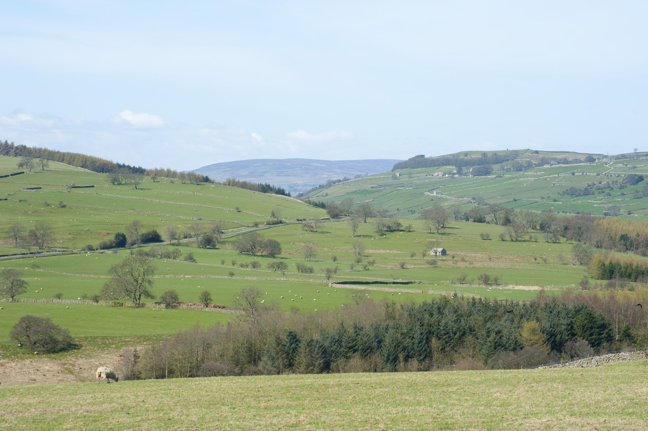 rolling hills in the yorkshire dales national park