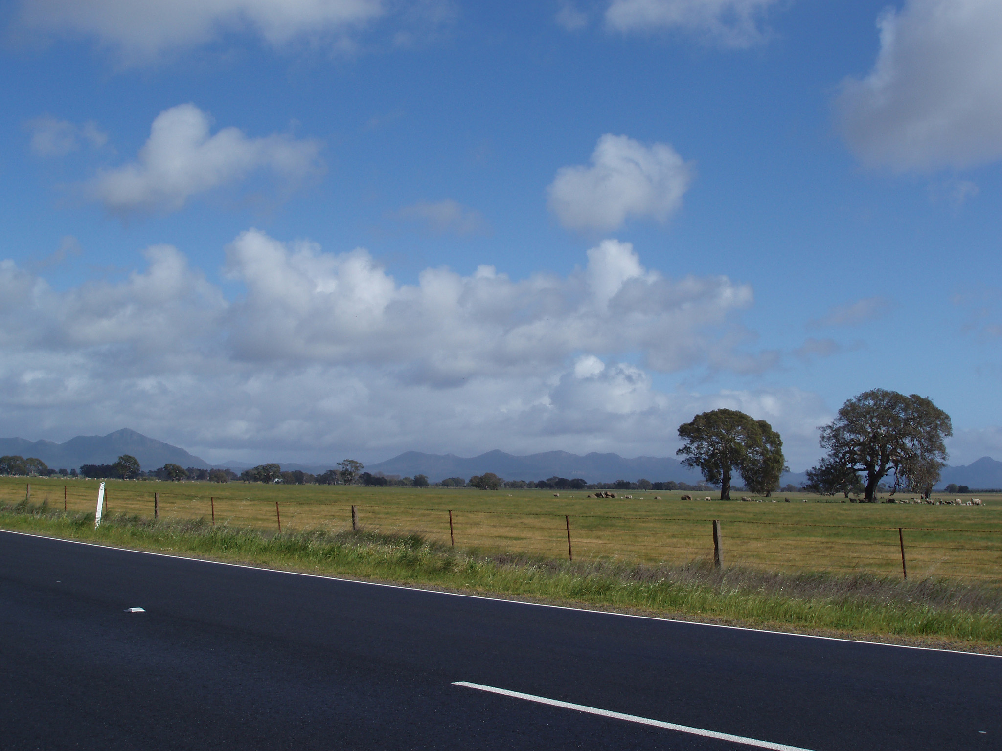 Beautiful Spot at Wide Grassy Grampians Field Along the Road on Lighter Blue and White Sky Background.