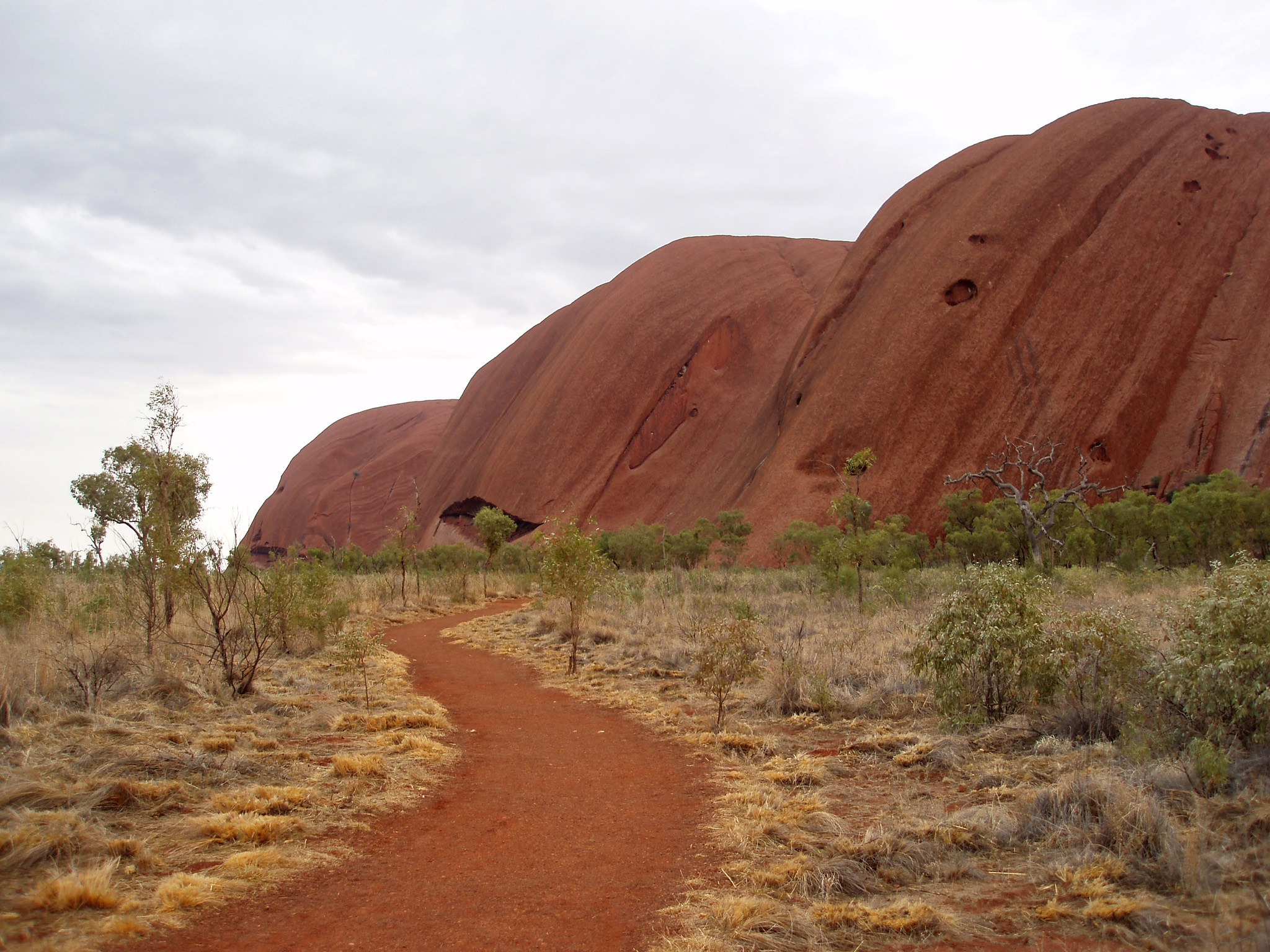 Close up View of Famous Australian Nature Icon Uluru with Grassy Landscape on Very Light Blue Sky Background.