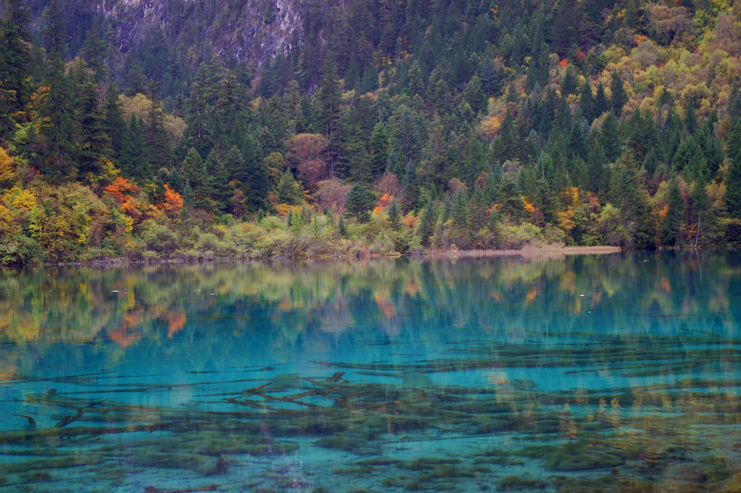 Beautiful natural Attraction of Cyan Blue Lake and Colorful Plants and Trees Located in China.