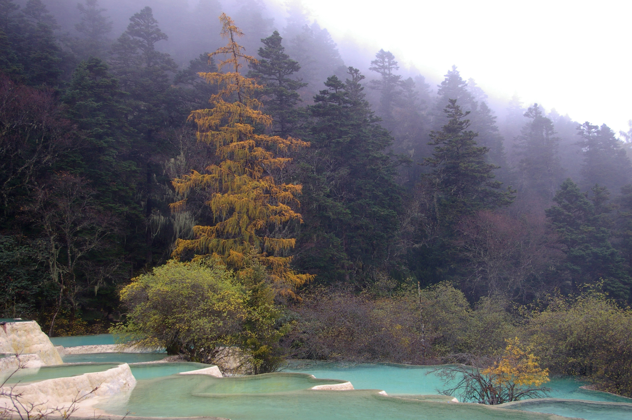 Beautiful Blue Crystallized China Thermal Pools in Unique Shapes Surrounded by Green Plants and Trees.