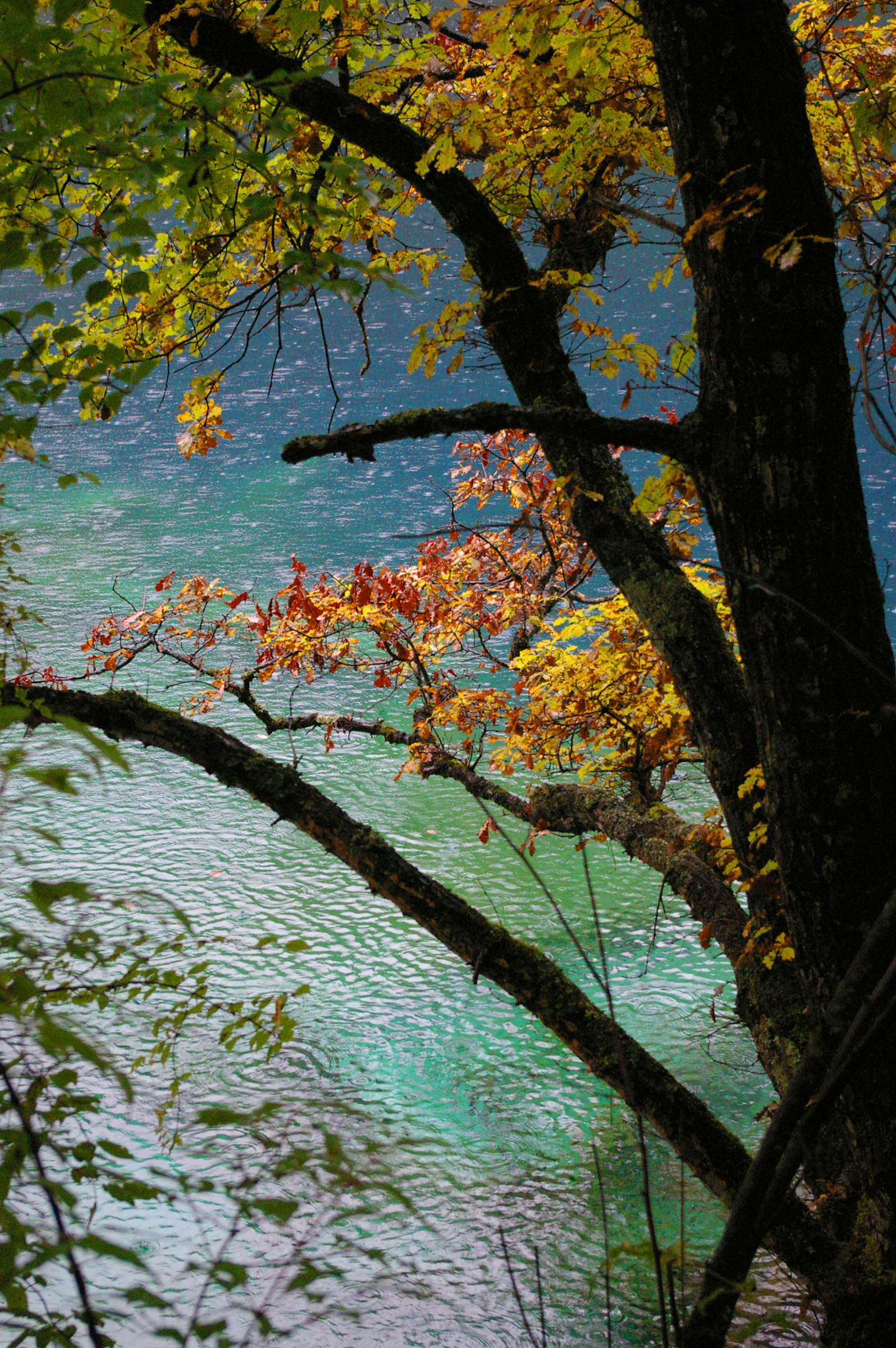Tourist Attraction - Beautiful Autumn Colors at Famous Cyan Blue Lake in China