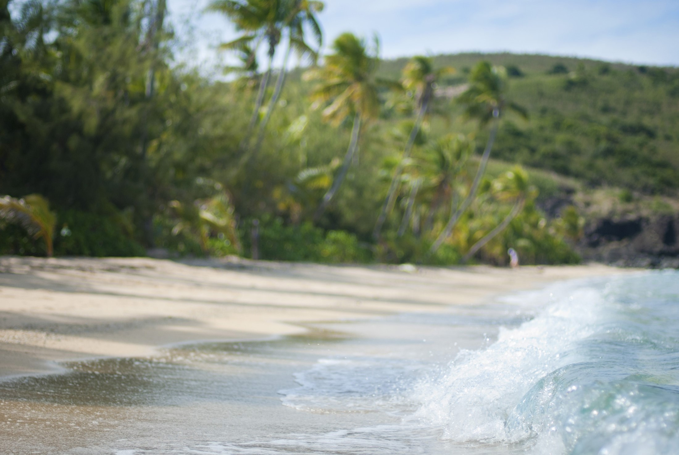 Surf breaking on a deserted tropical sandy beach fringed with palm trees and hills