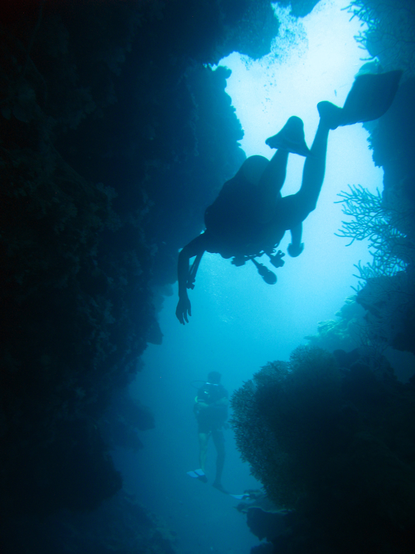 Underwater image of a scuba diver descending into a cave looking for fan corals