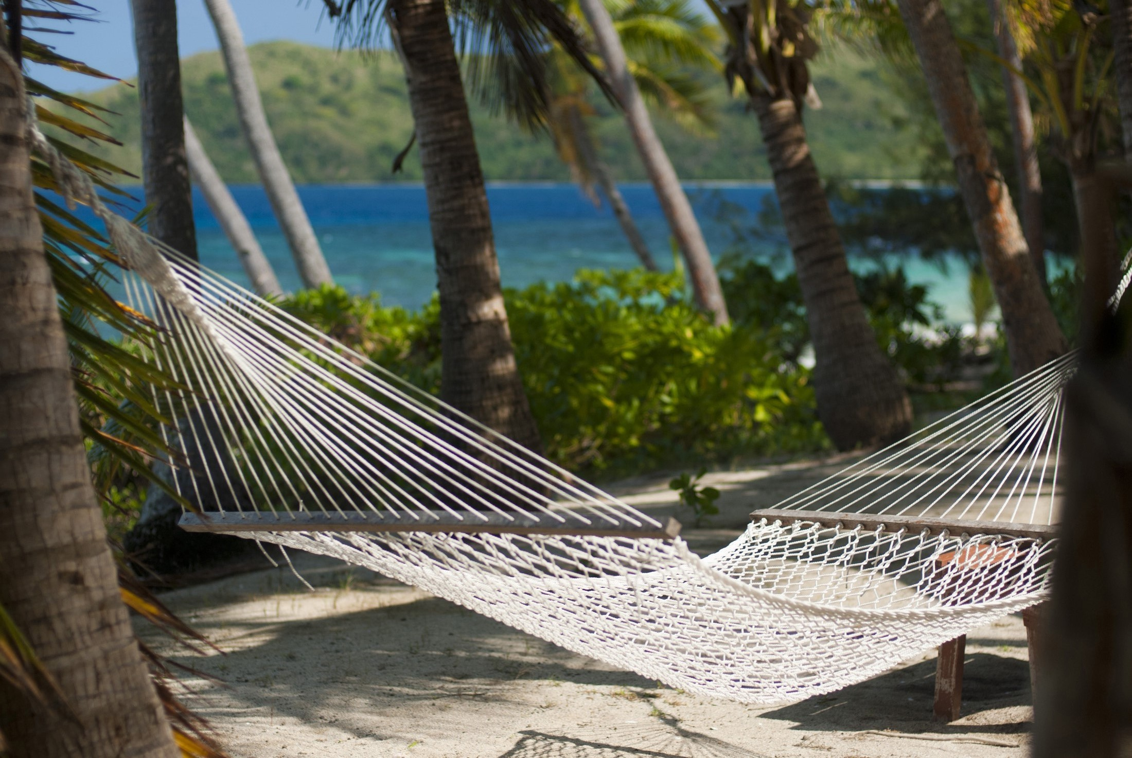 Empty hammock strung from palm trees overlooking a blue ocean on an idyllic tropical island