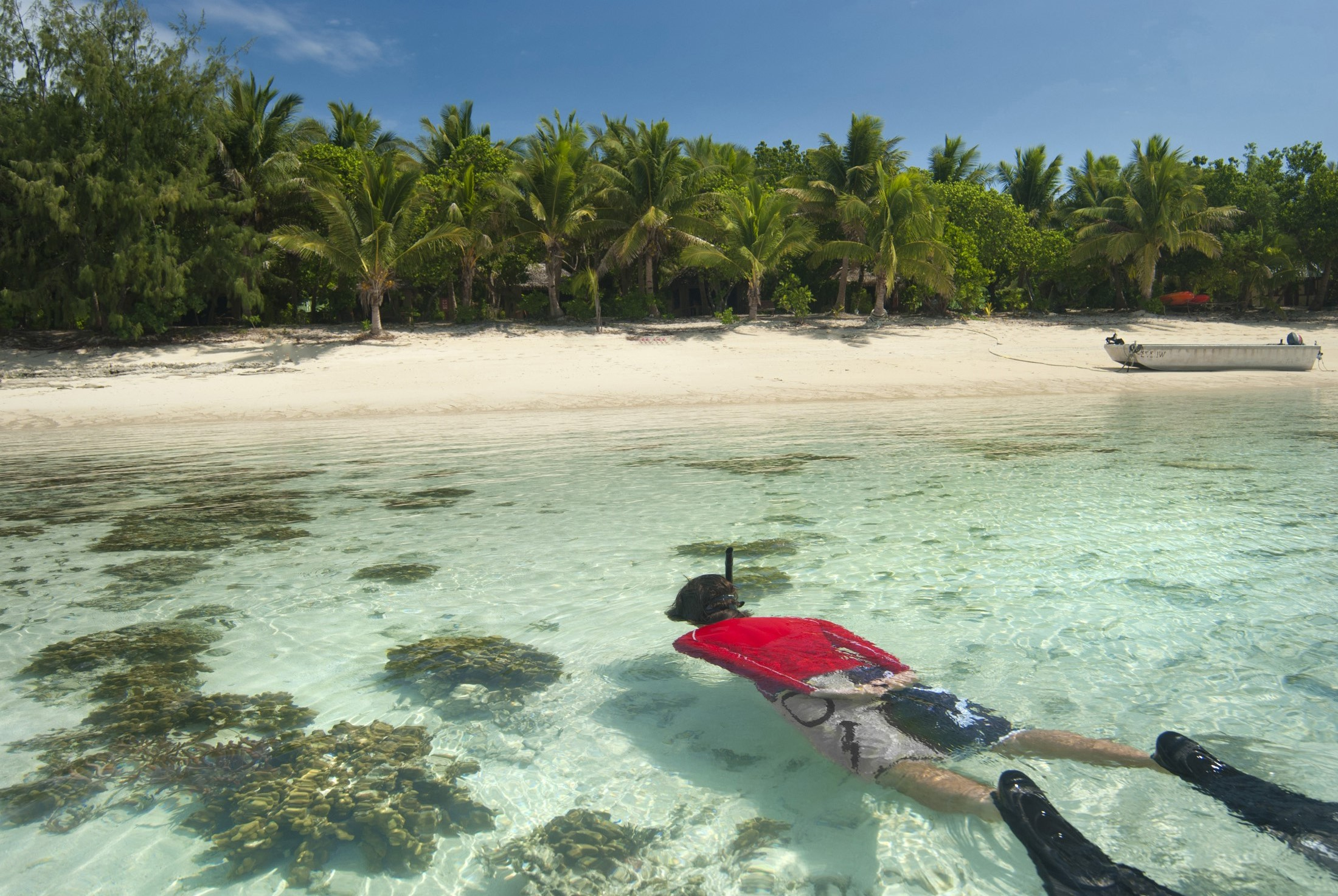 Man snorkeling off a tropical island floating over a shallow reef in crystal clear water