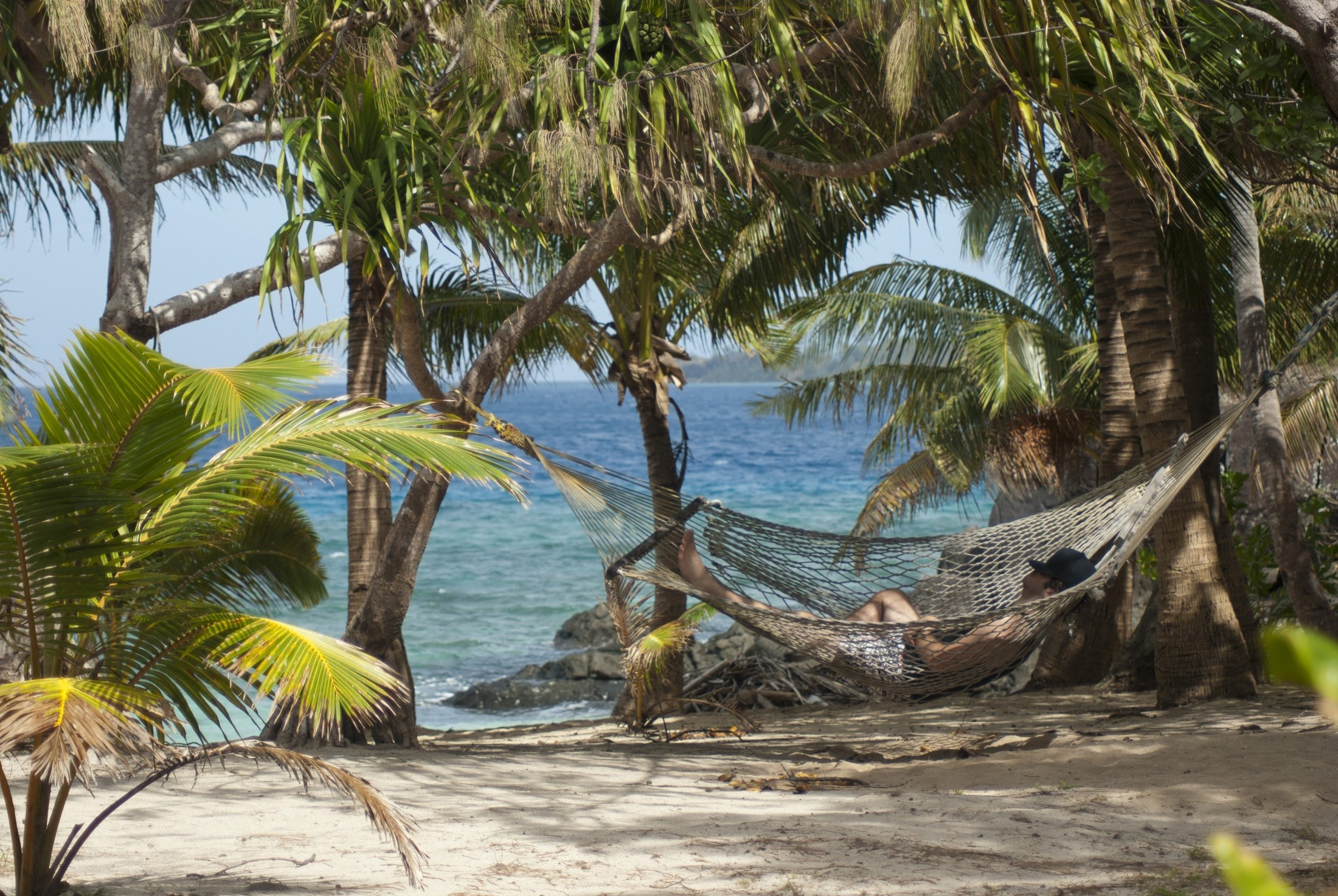 Free Stock Photo Of Relaxing In A Tropical Hammock