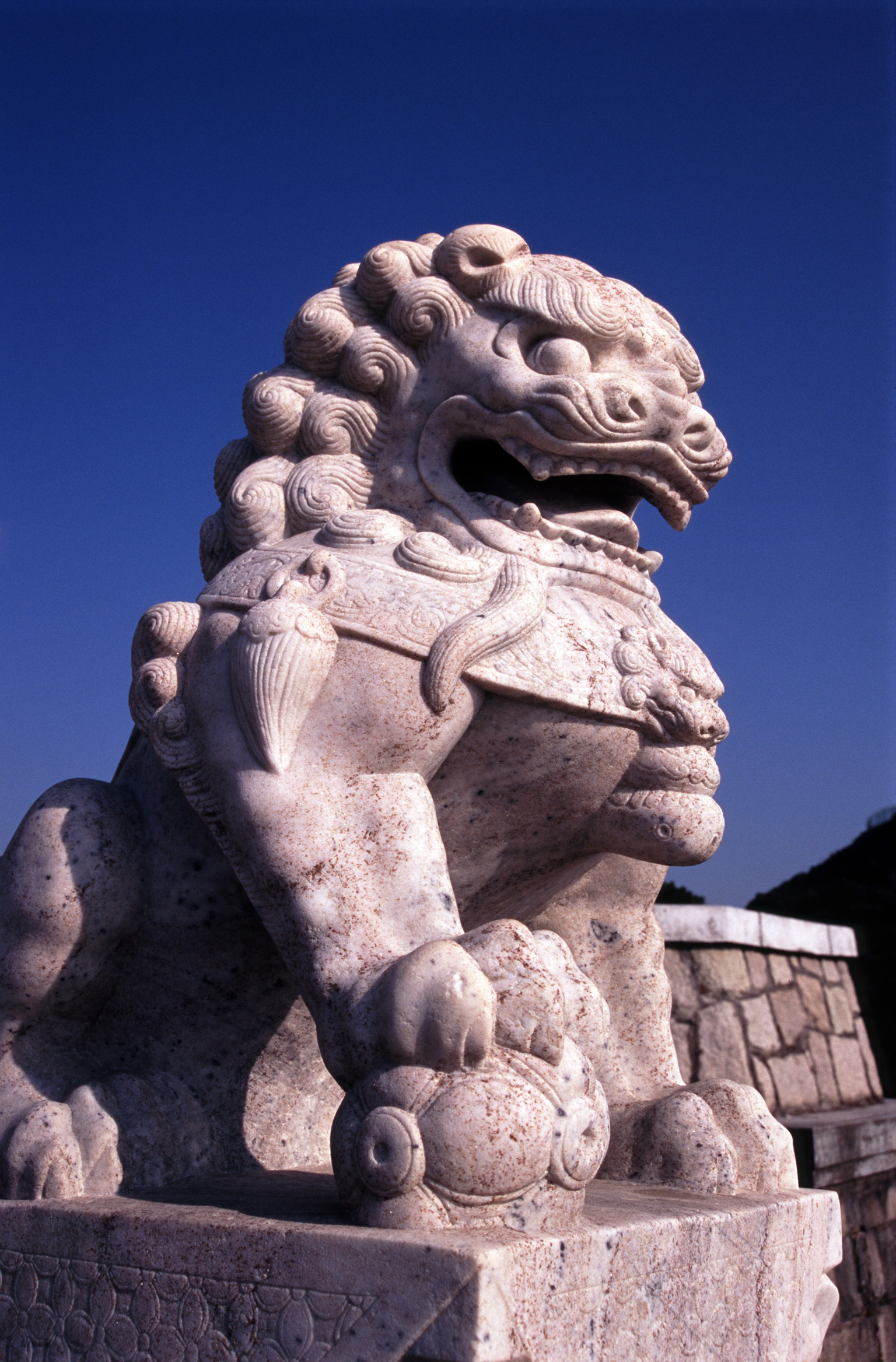 Close up Lucky Chinese Stone Lion Sculpture on Blue Sky Background.