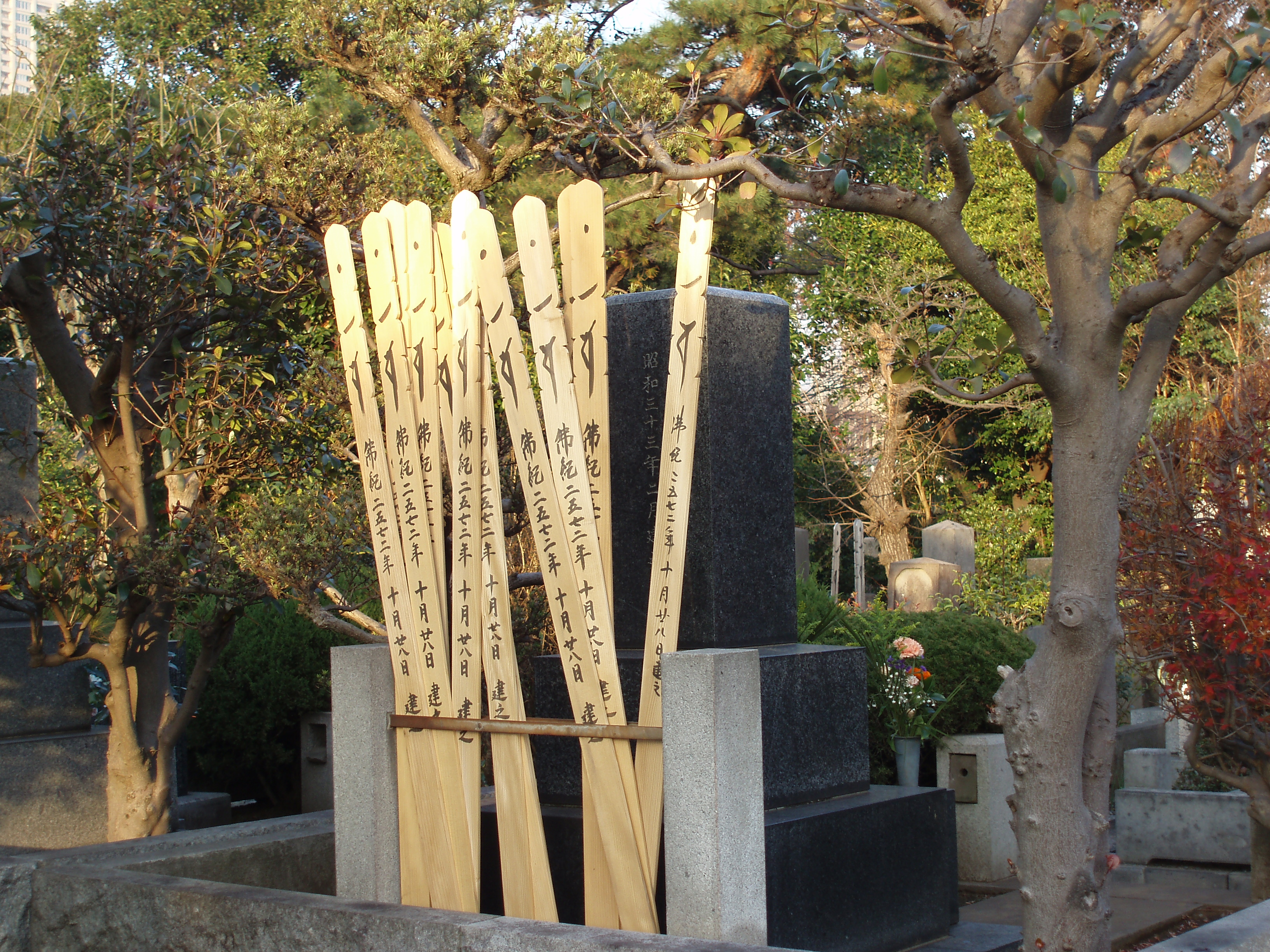 traditional wooden burial sticks in a tokyo cemetery