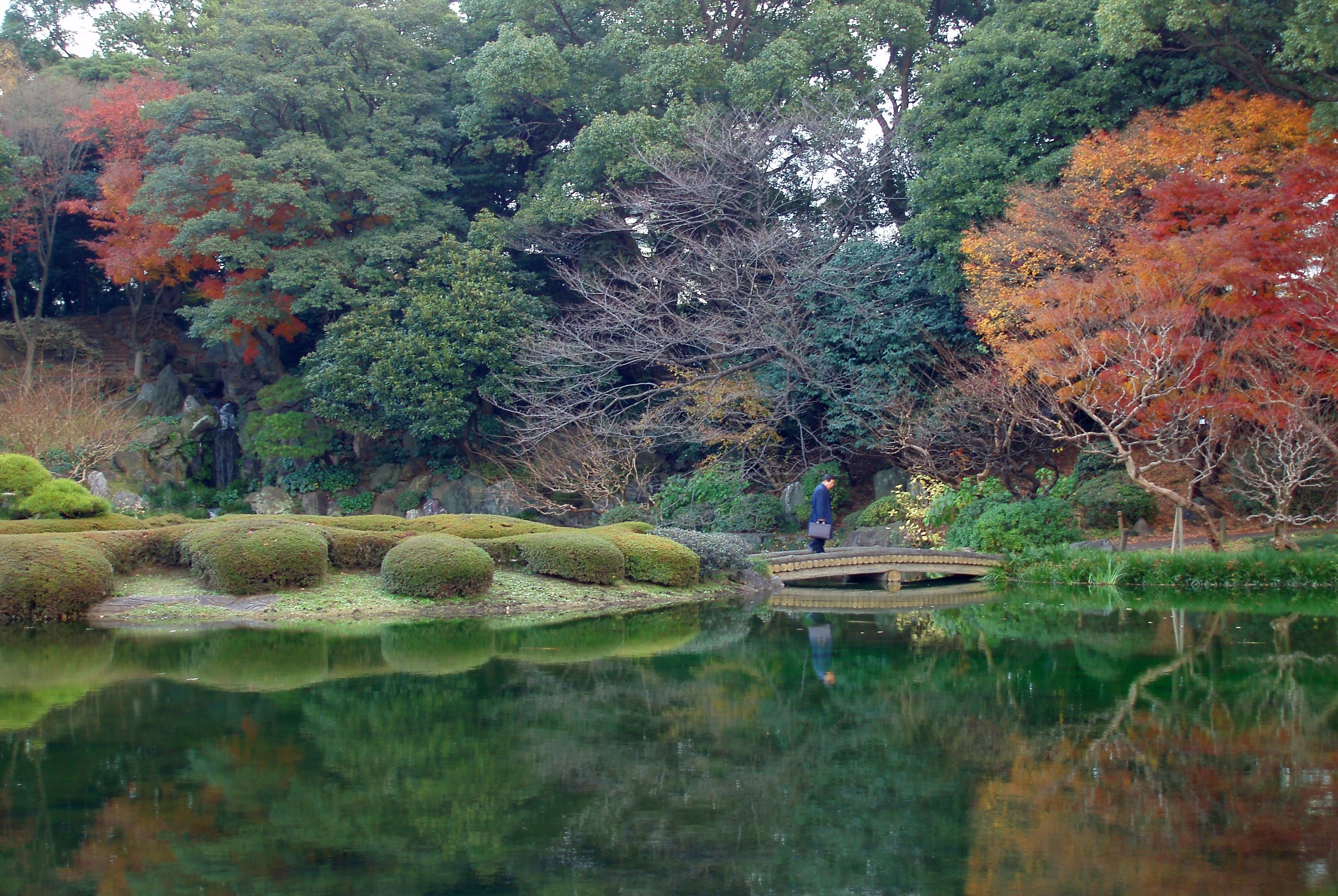 ornate japanese style gardens in a tokyo park including a reflecting lake