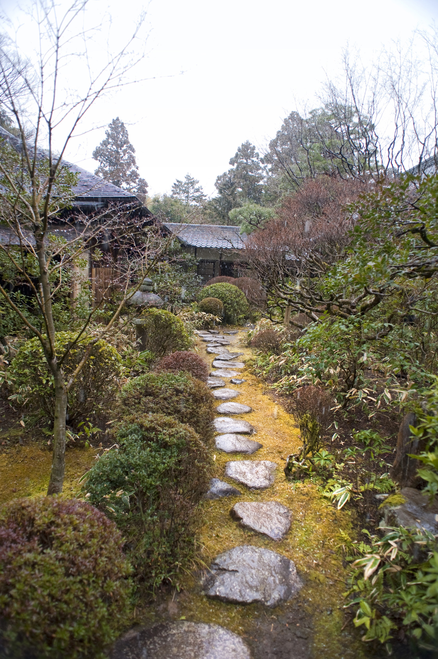 Free Stock photo of Daitoku-ji Gardens | Photoeverywhere