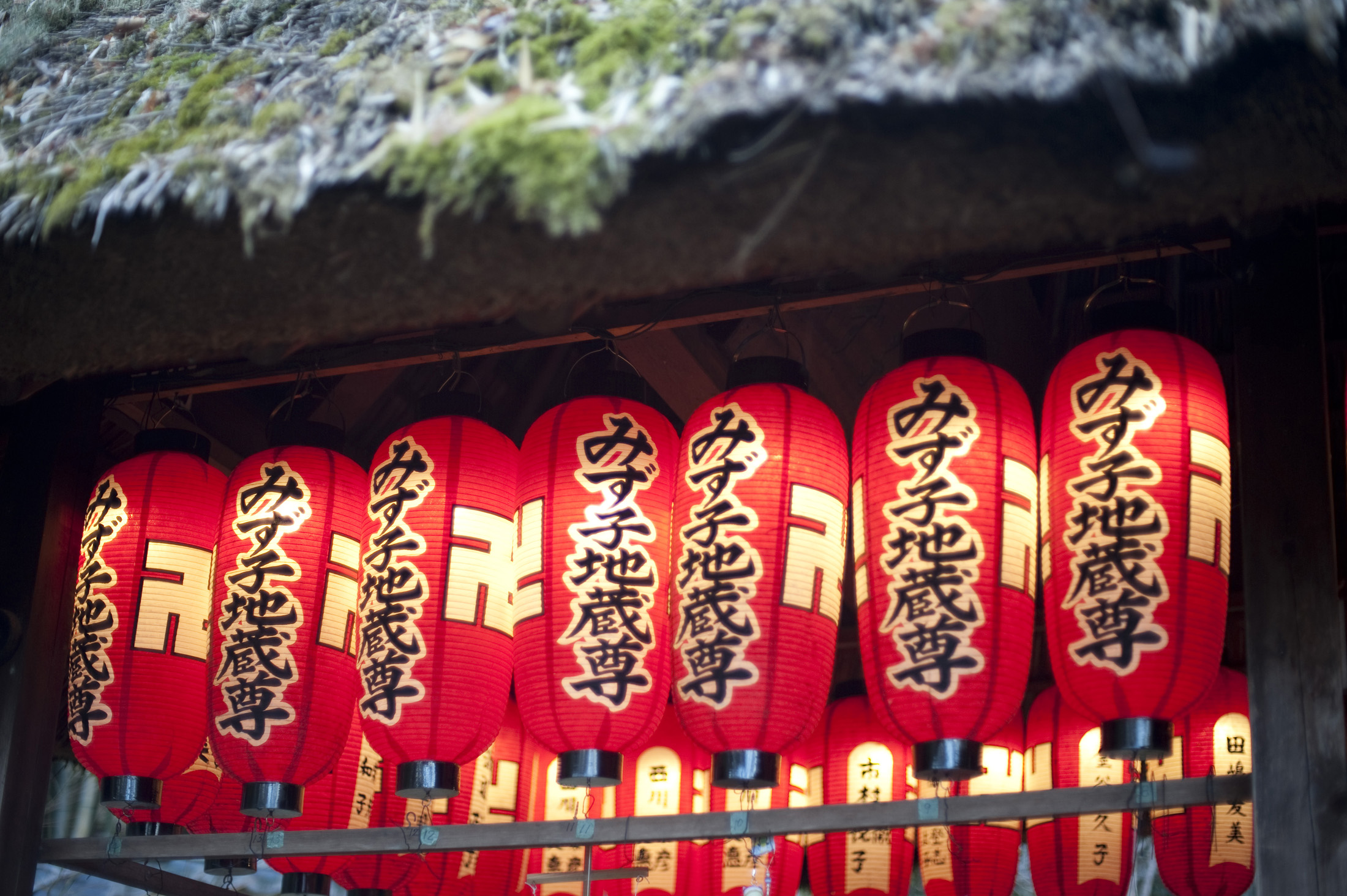 Red paper lanterns at a buddhist temple