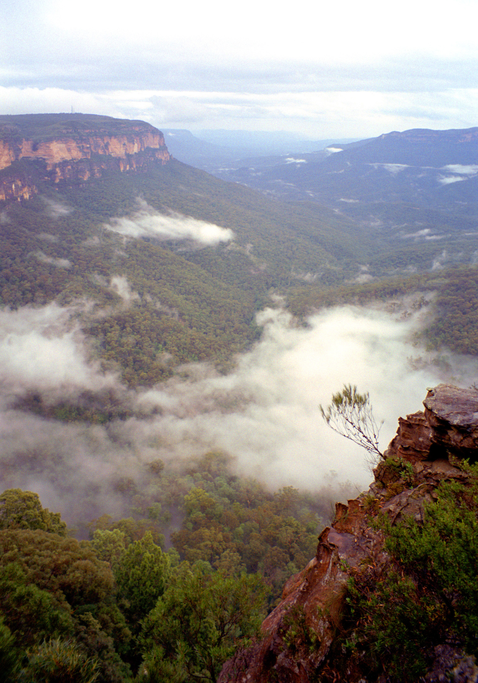 Fogs hangng over a valley in the Blue Mountains. Captured in Aerial View.
