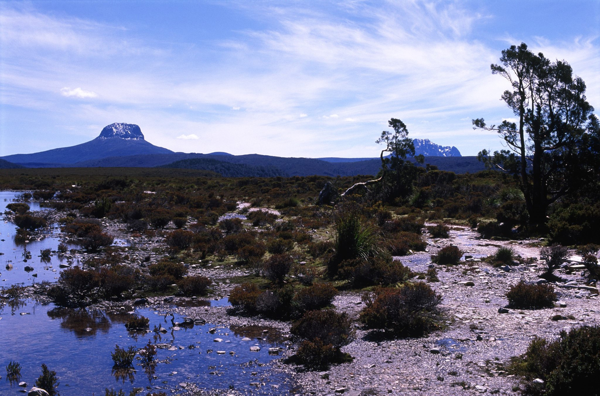 Reflections in the water flats and marshes in Tasmania on the Overland Trail with a distant view of Barn Bluff