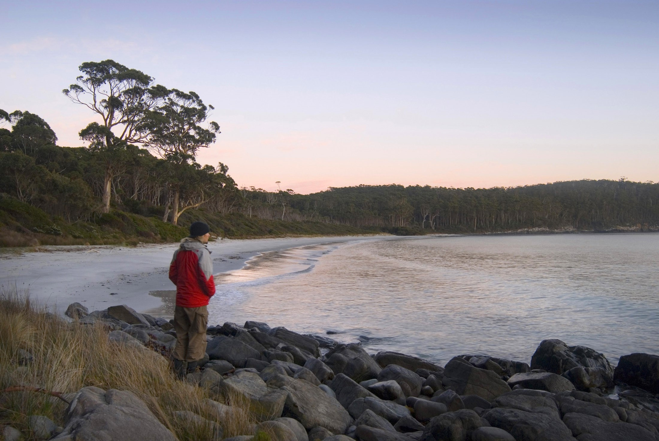 looking out at the sunrise over fortescue bay, tasman peninsula