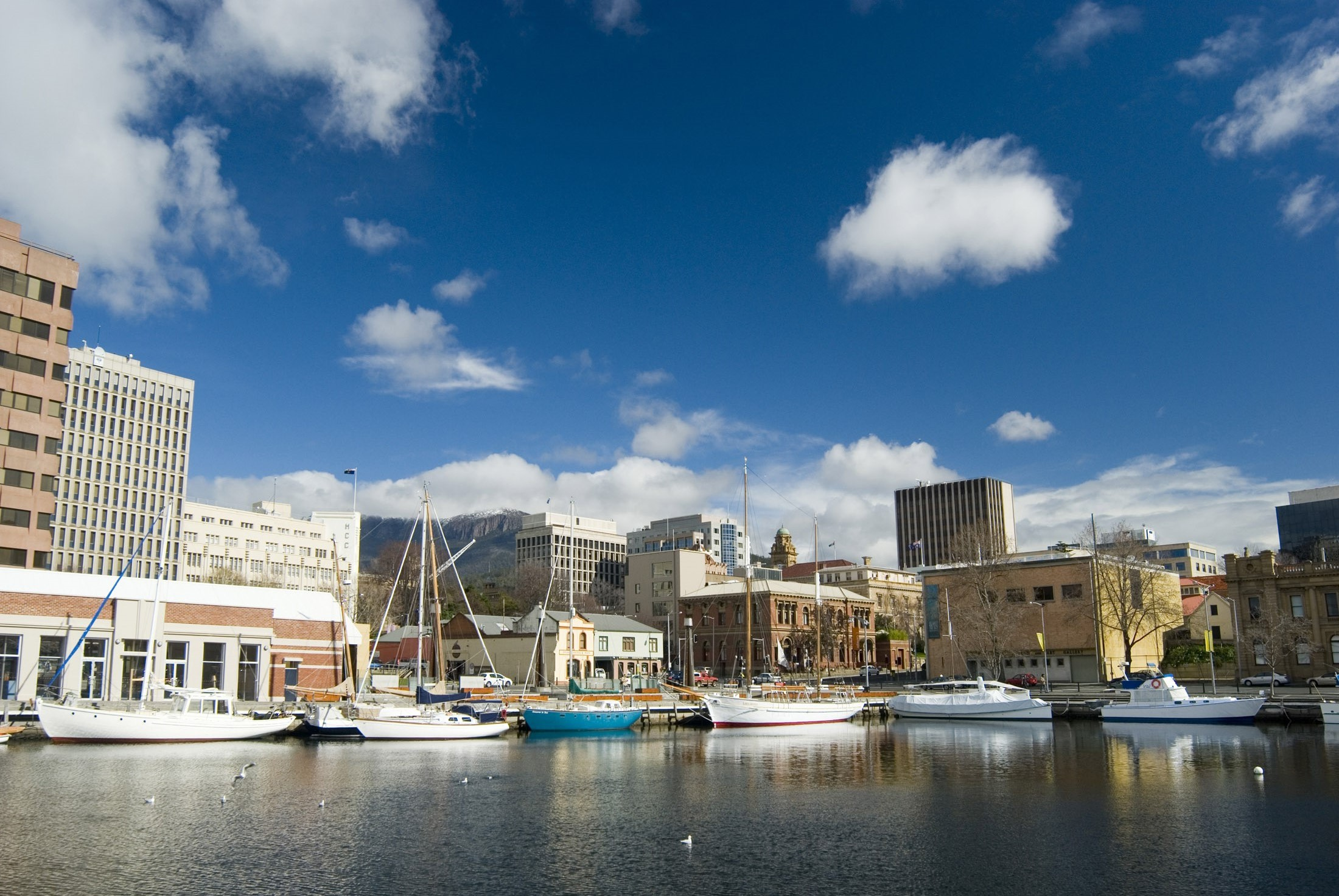 a sunny day at hobart docks, with the CBD and mount wellington in the distance