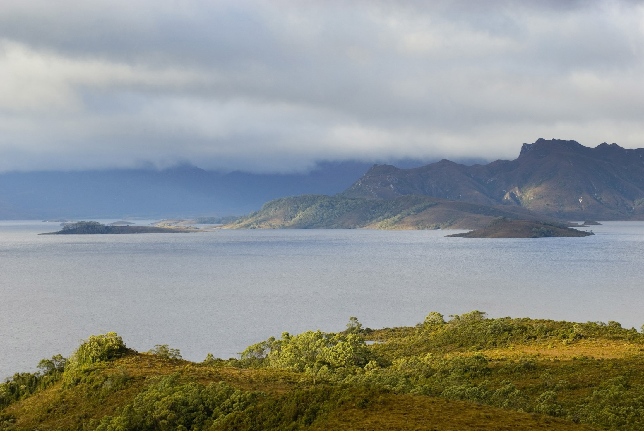 a panoramic view of lake pedder, southwest tasmania