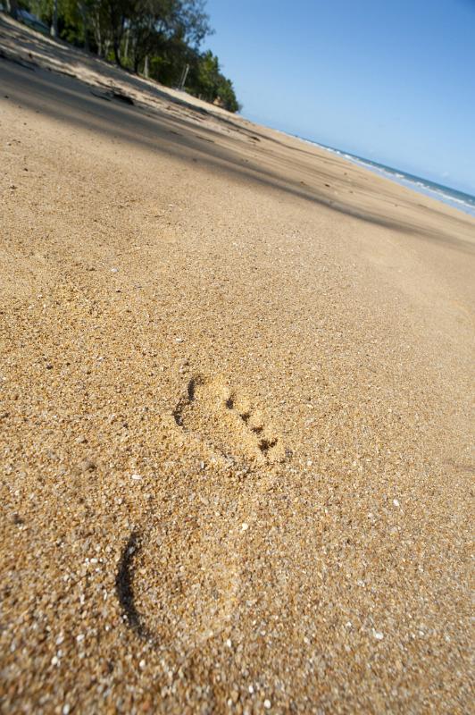 beach footprint by photoeverywhere.co.uk