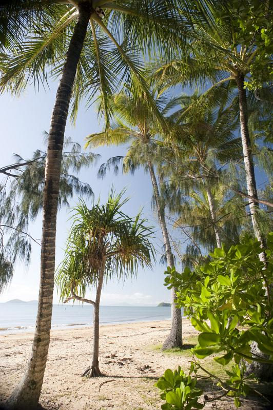 tropical beachfront by photoeverywhere.co.uk