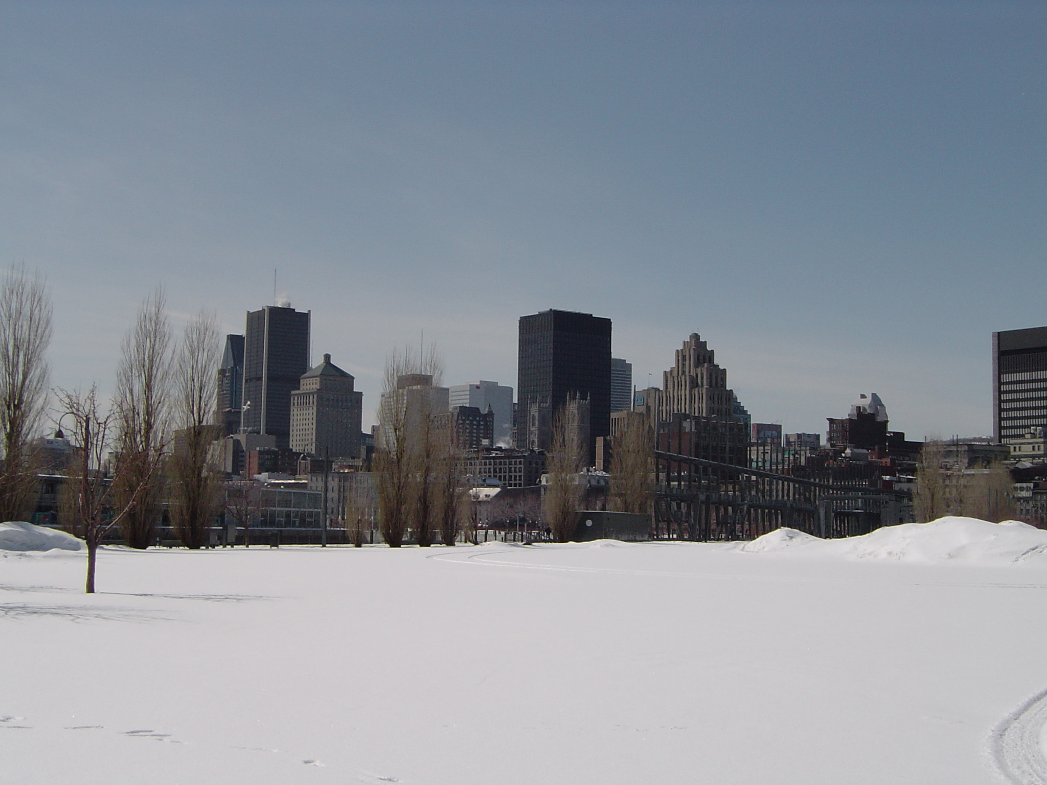 Montreal City Skyline in Winter as seen from Snow Covered Park