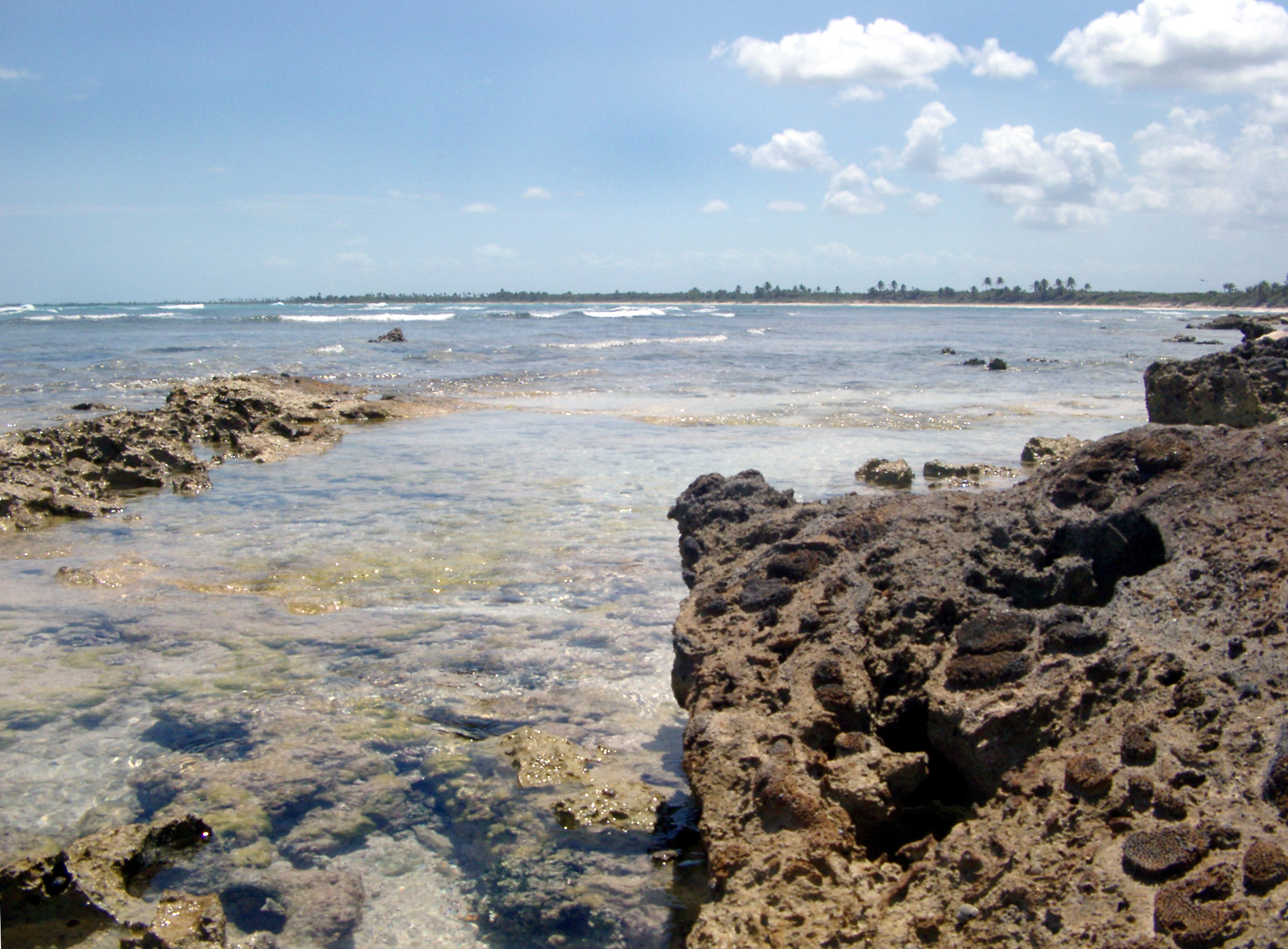 Rocky reef on the edge of the ocean with golden beach sand and a tranquil ocean view, Mexico