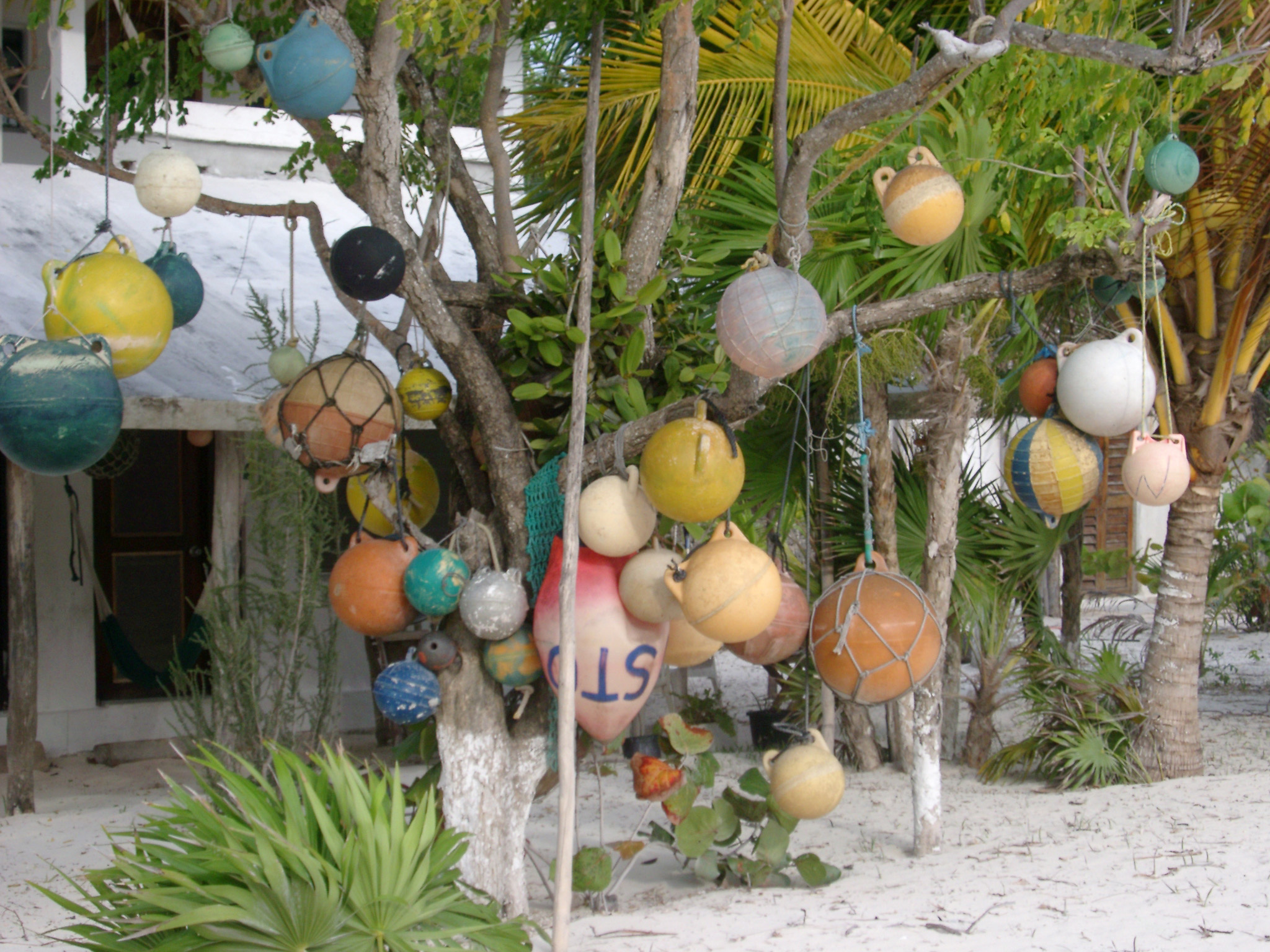 Collection of assorted colorful fishing floats hanging from a tree in a Mexican village