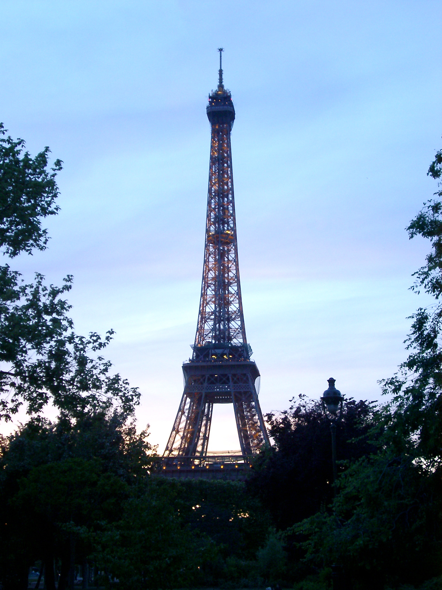 Silhouette of Eiffel Tower and Tree Tops at Dusk or Dawn, Paris, France