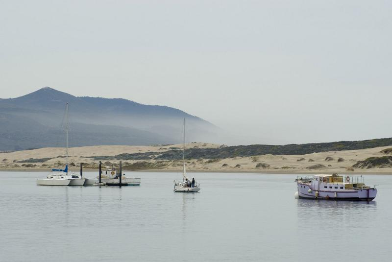 Free stock photo of small fishing boats at beautiful morro for Morro bay fishing