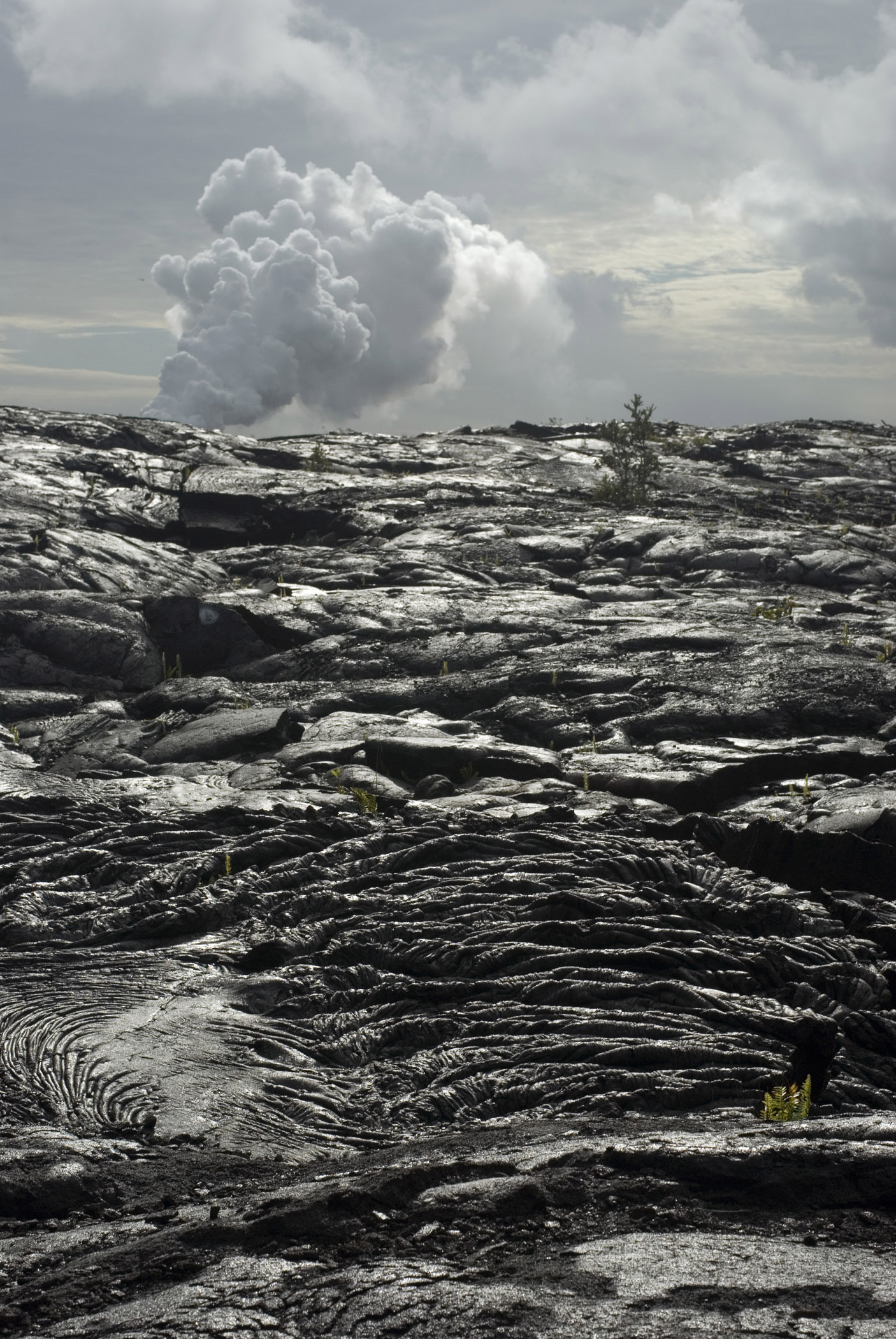 Lava Fields in Volcanoes National Park, Ohau, Hawaii with solidified lava flows of black igneous rock stretching into the distance