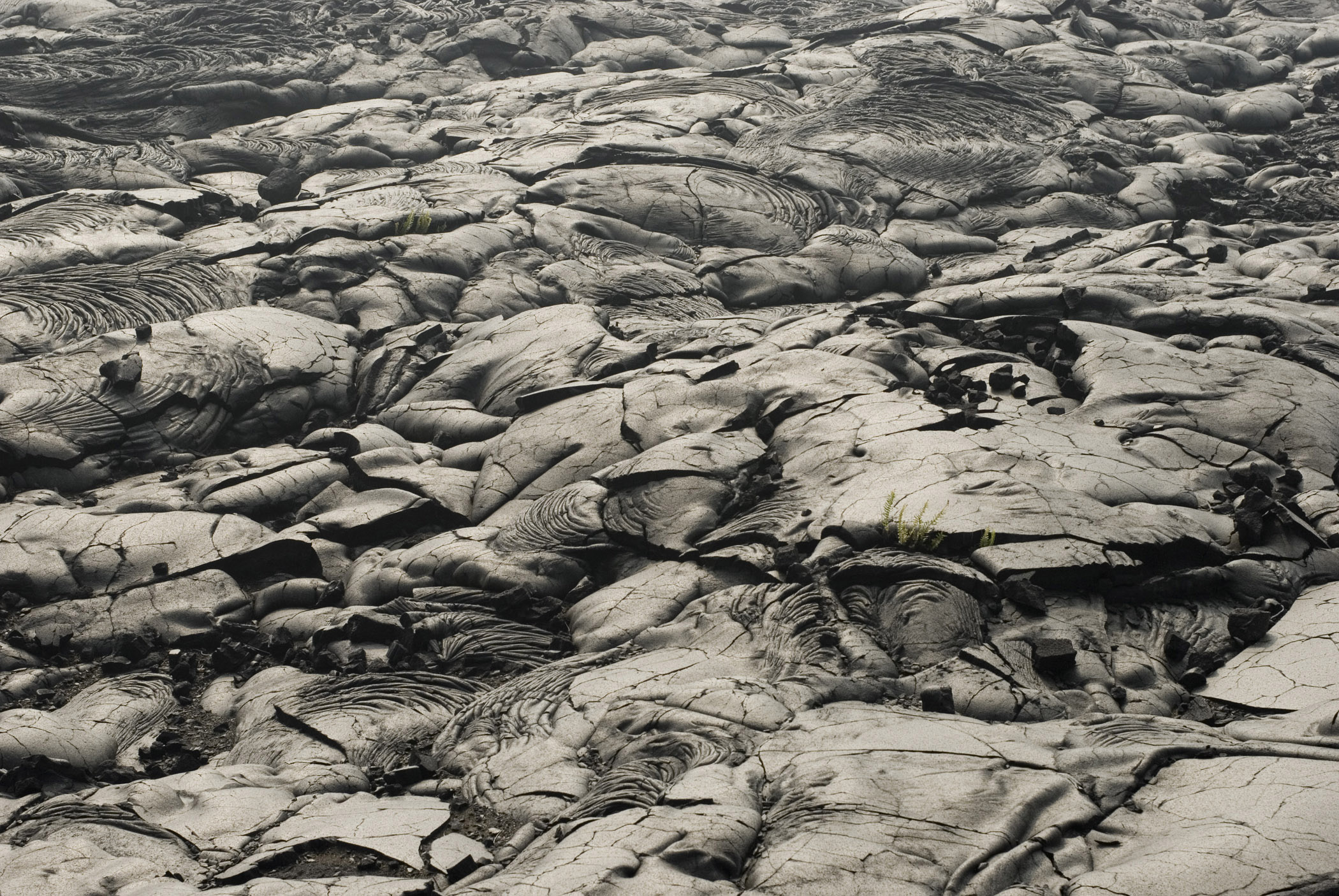 Close up Gray Scale Textured Lava Fields in Hawaii.