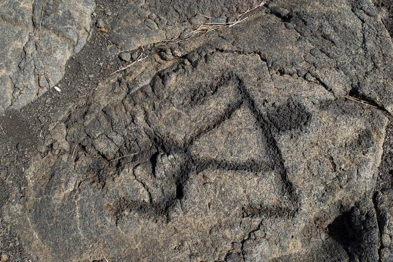 Free stock photo of puu loa petroglyphs detail