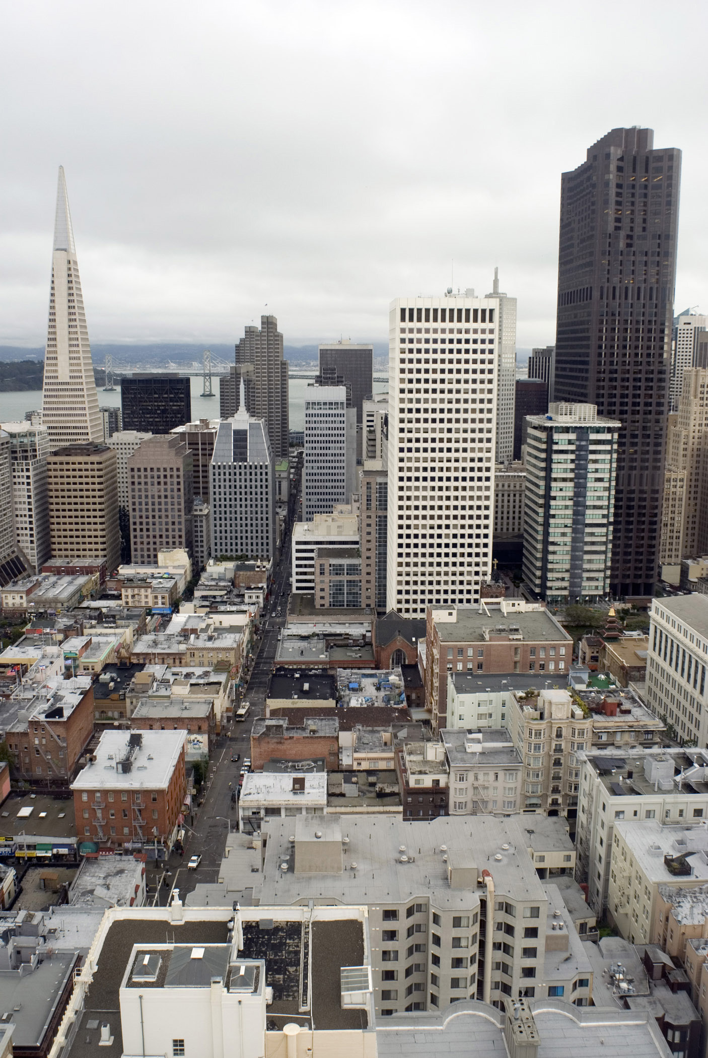 Architectural City Buildings at Downtown San Francisco in Aerial View. Captured on Gray Sky Background.