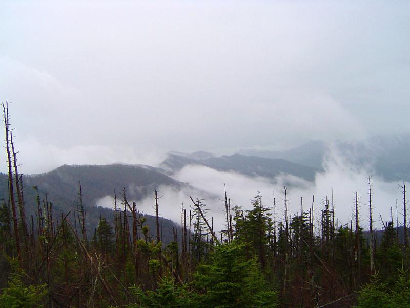 Mt Washington Cloud Ring Summit
