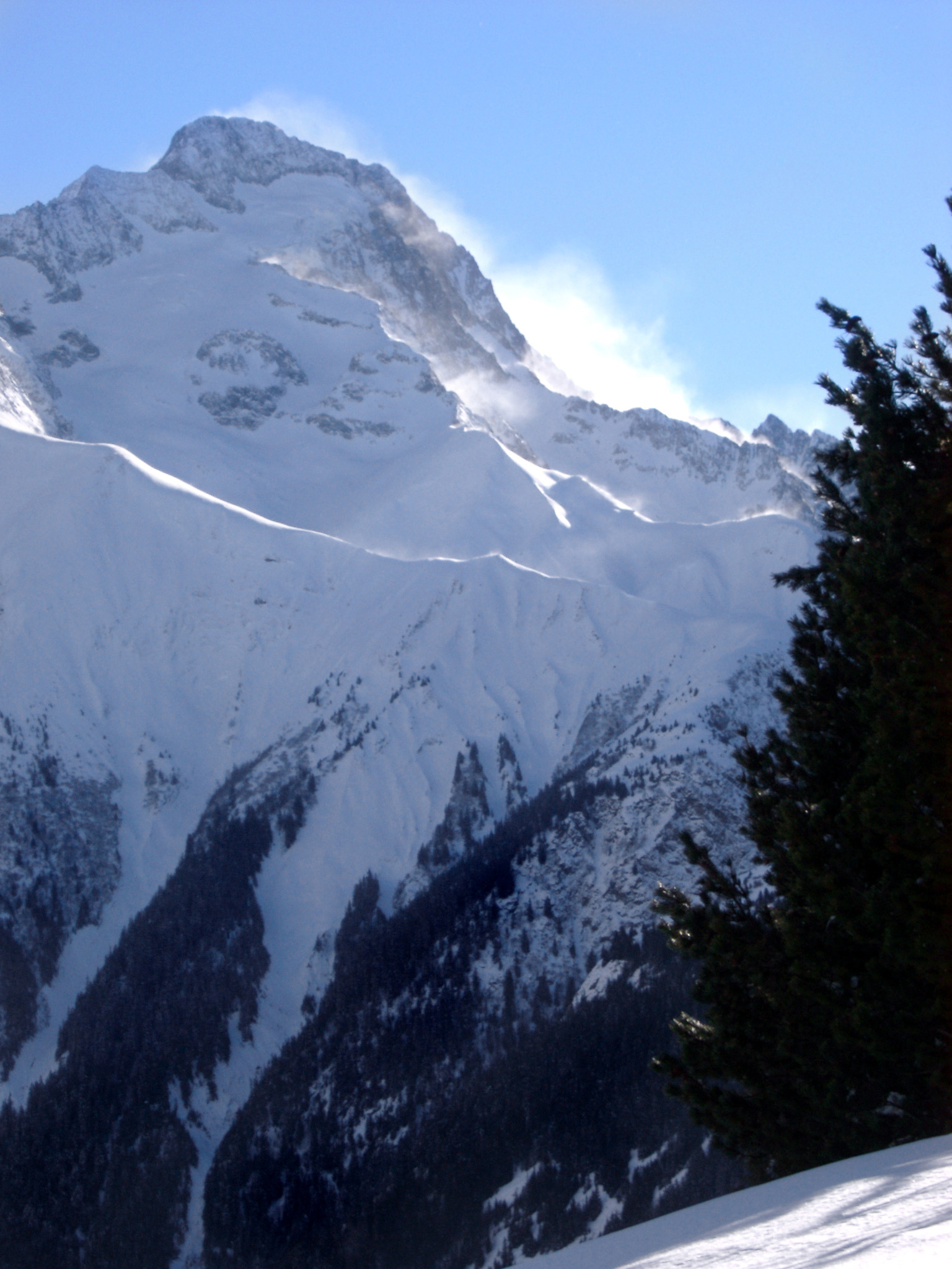 Winter mountains in France with a rugged snow covered peak towering above an evergreen forest of fir trees under a sunny blue sky